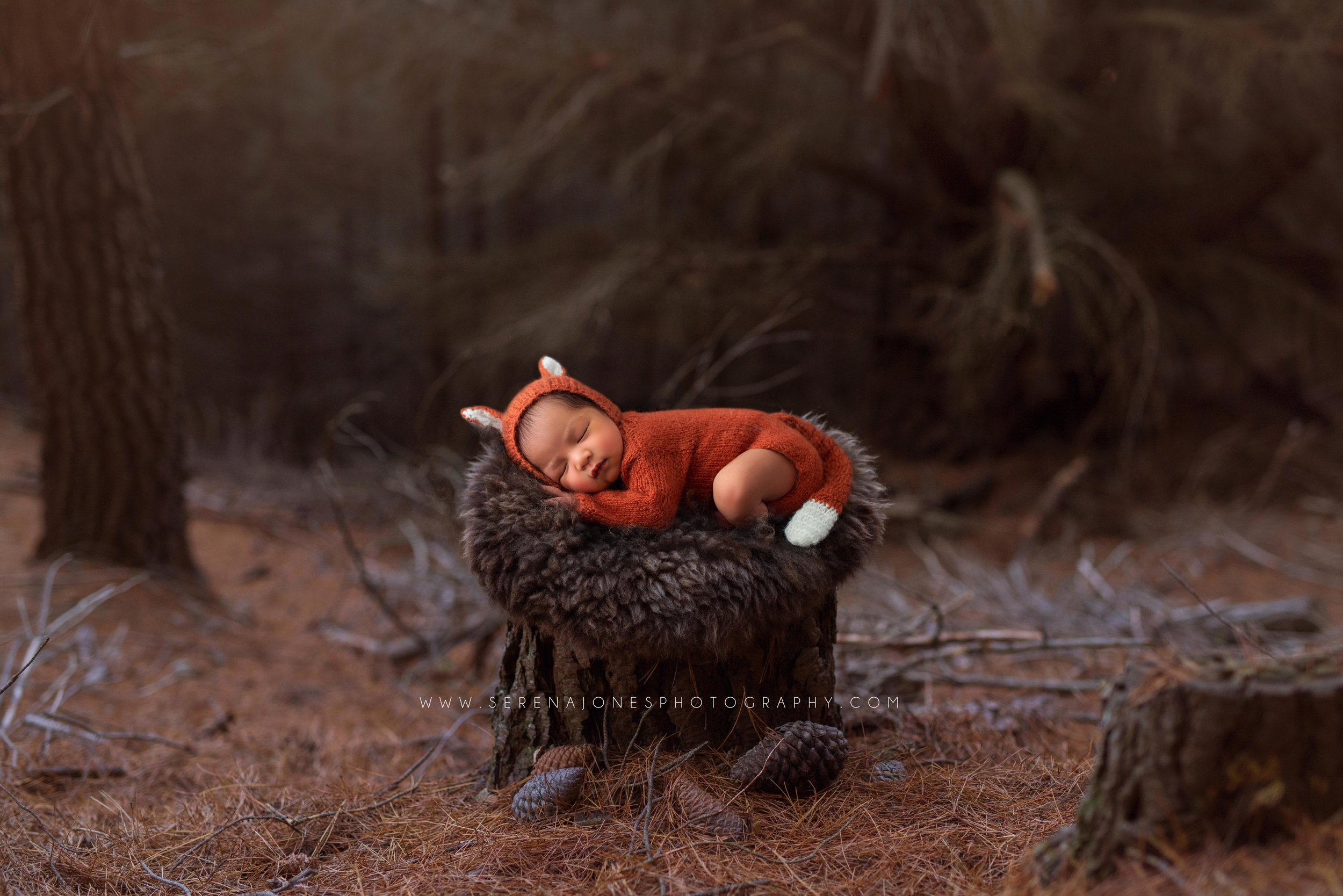 Serena Jones Photography - Tobias Akira Mateo - 33 FB.jpg