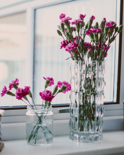 pink+flowers+window.jpg
