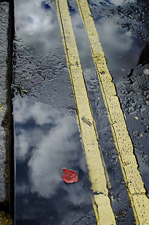 Yellow-lines-rain-puddle.jpg