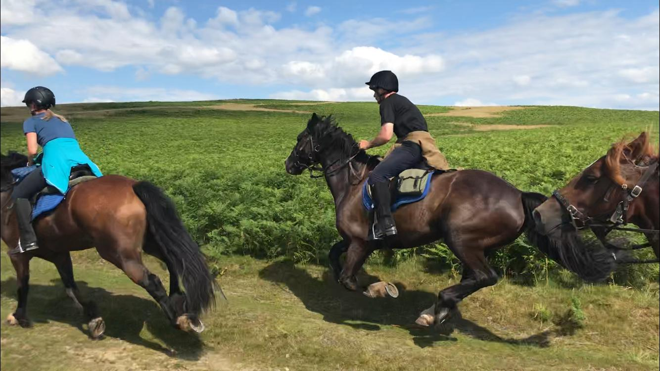 This image was taken by the fabulous Rosie, (our guide on the Trans Wales Ride) as she cantered along beside us!