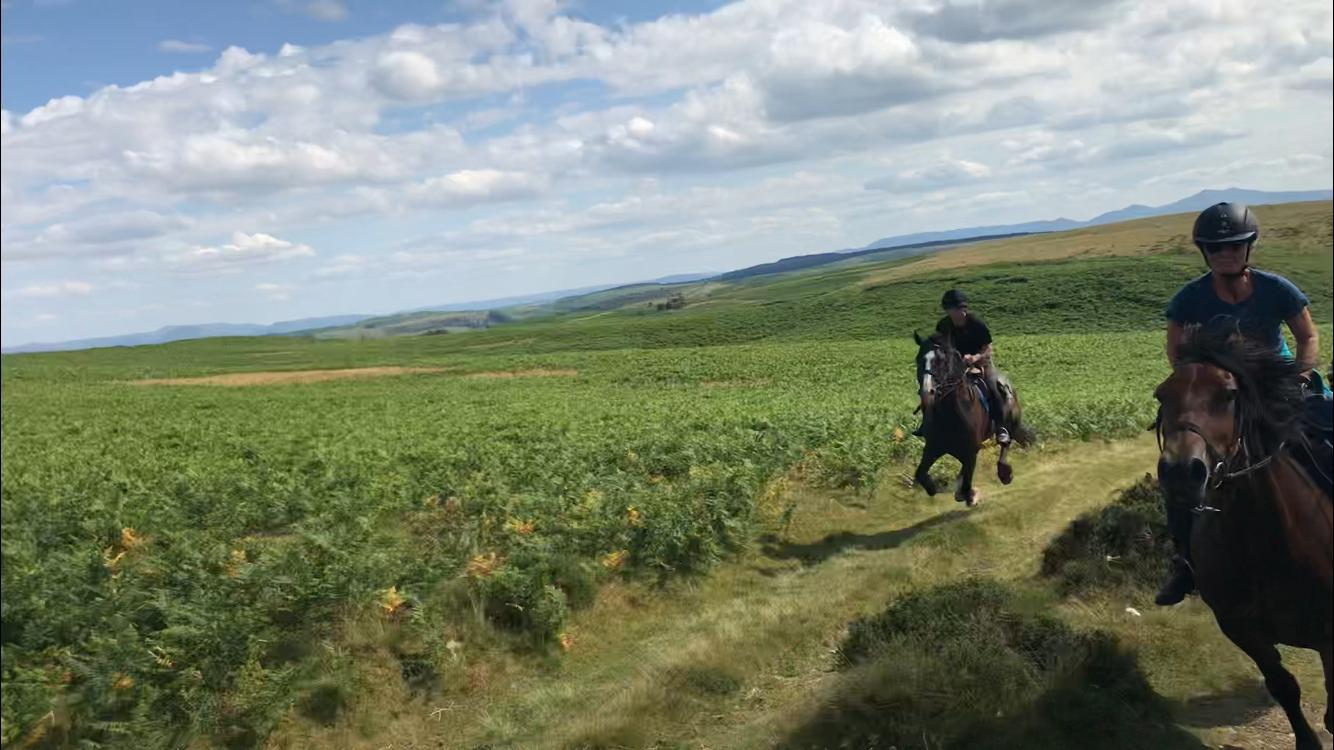 Another image shot by Rosie. I'm in the background and a bit blurry. Straight away the image makes me remember the canter and the fun I was having.