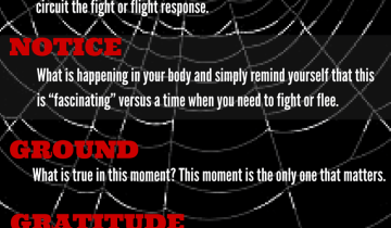 5-TIPS-to-calm-down-the-fight-or-flight-response.png
