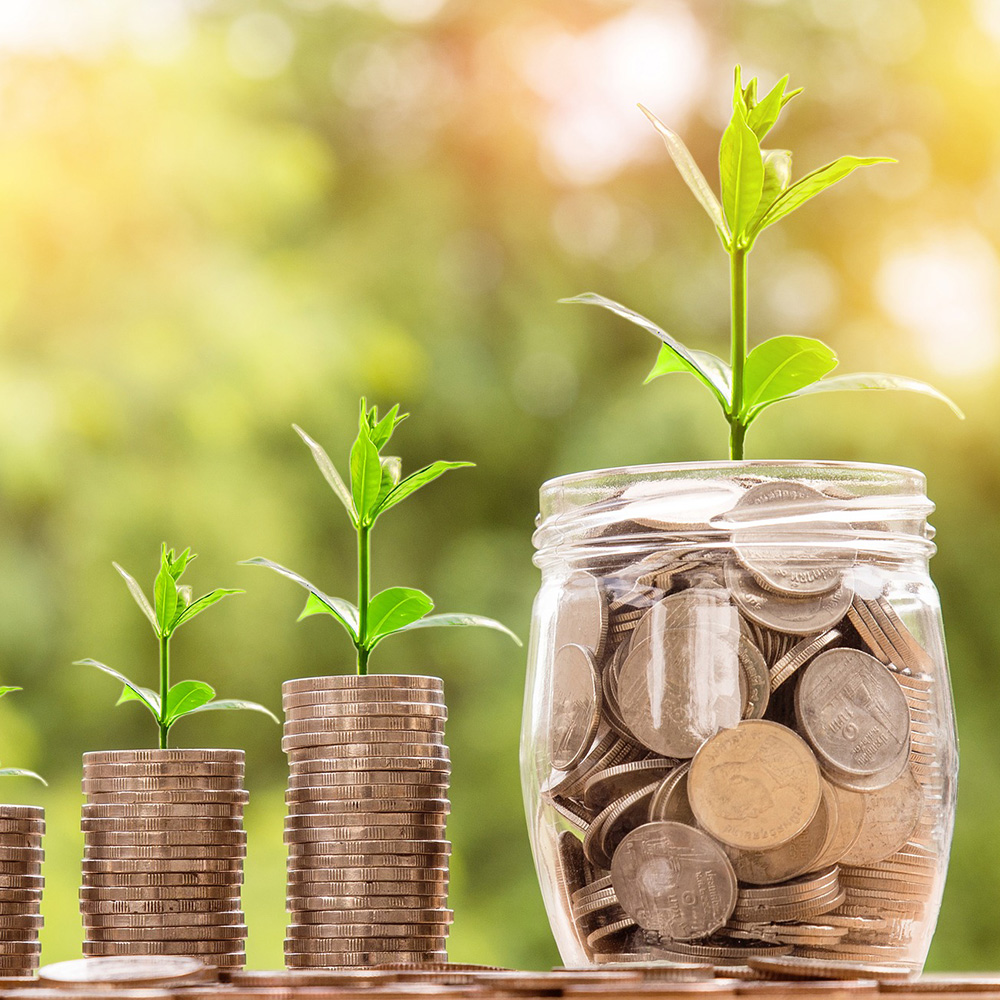 sticky-money-2724241-pixabay.jpg