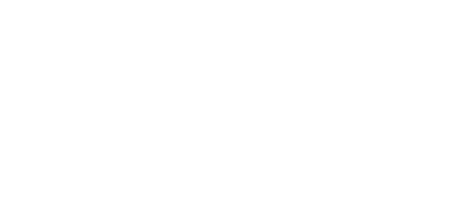 Logo-Beth-Wonson-And-Company-White.png