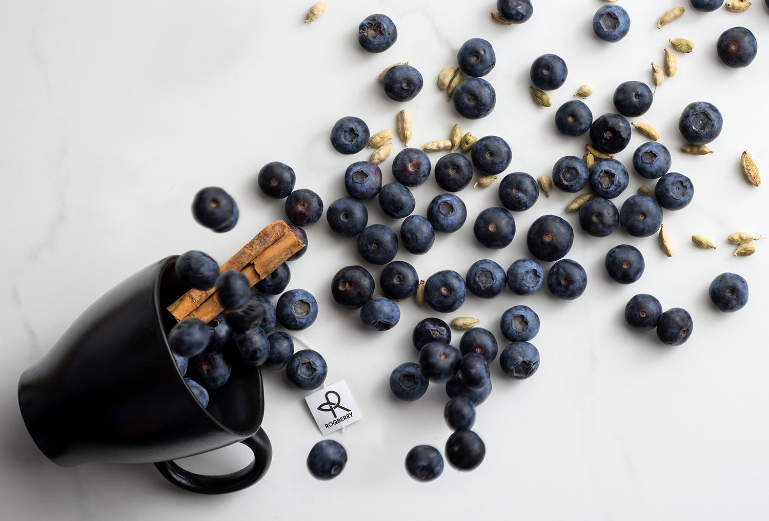 Roqberry_Spiced Blueberry_Product Image_1500px_72dpi.jpg