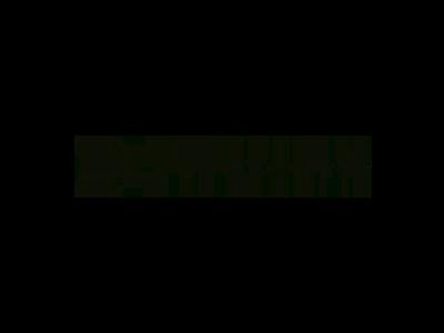 bluesound.png