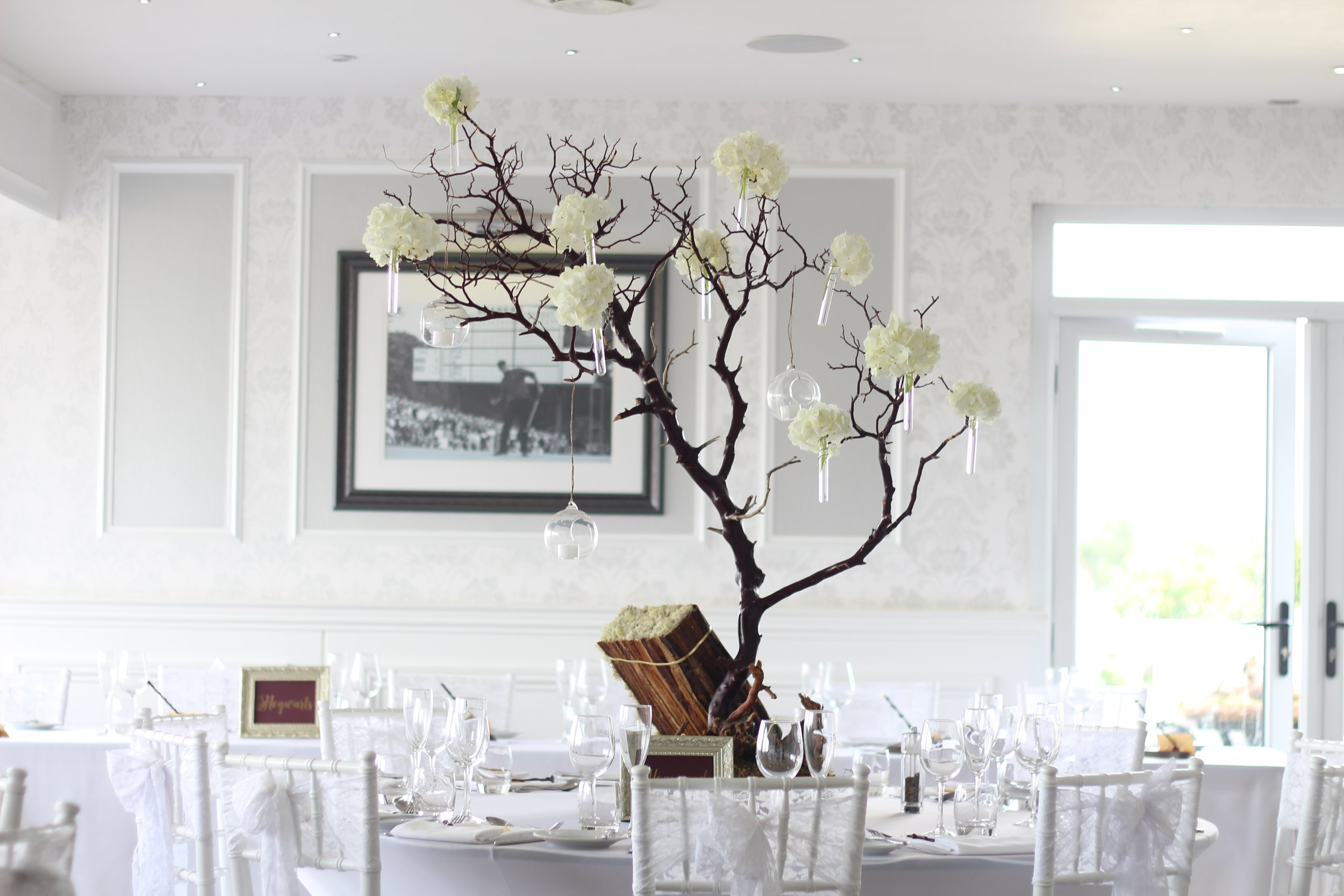 Table centres - natural manzanita with hydrangea hanging glass candle holders with a banana bark and moss spell book at the base...