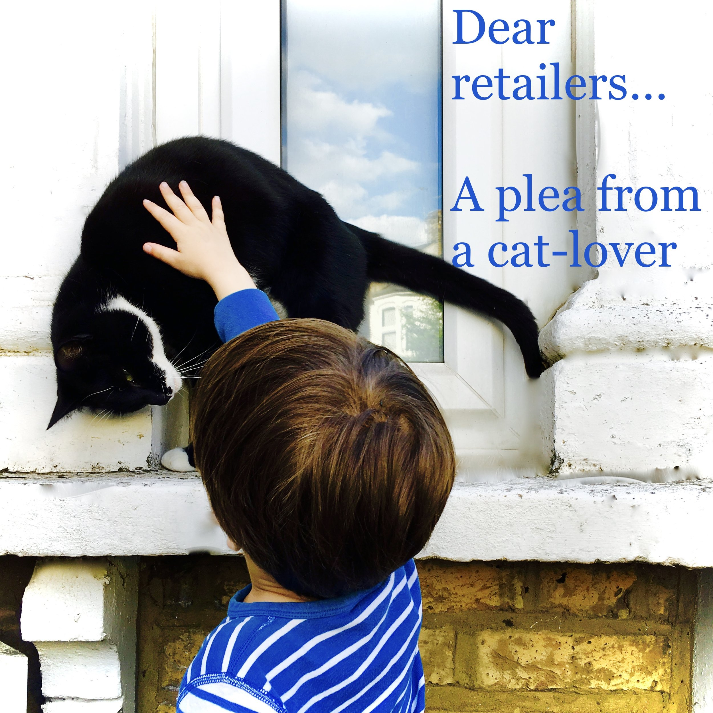 An open letter from a three year old cat lover
