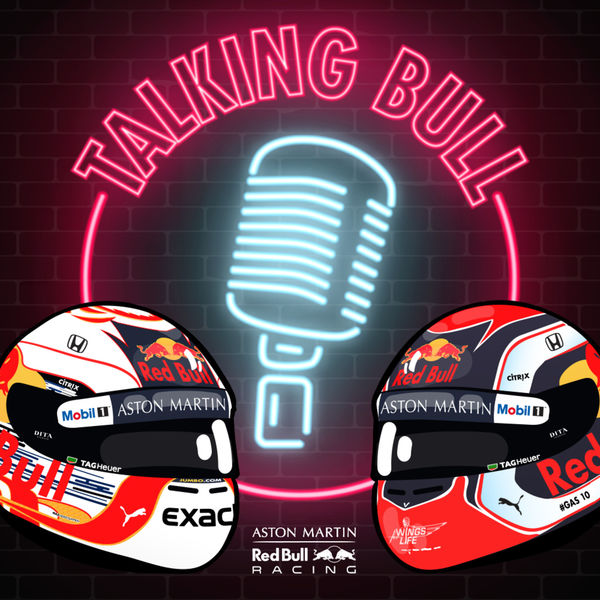 15. Talking Bull - Red Bull Racing