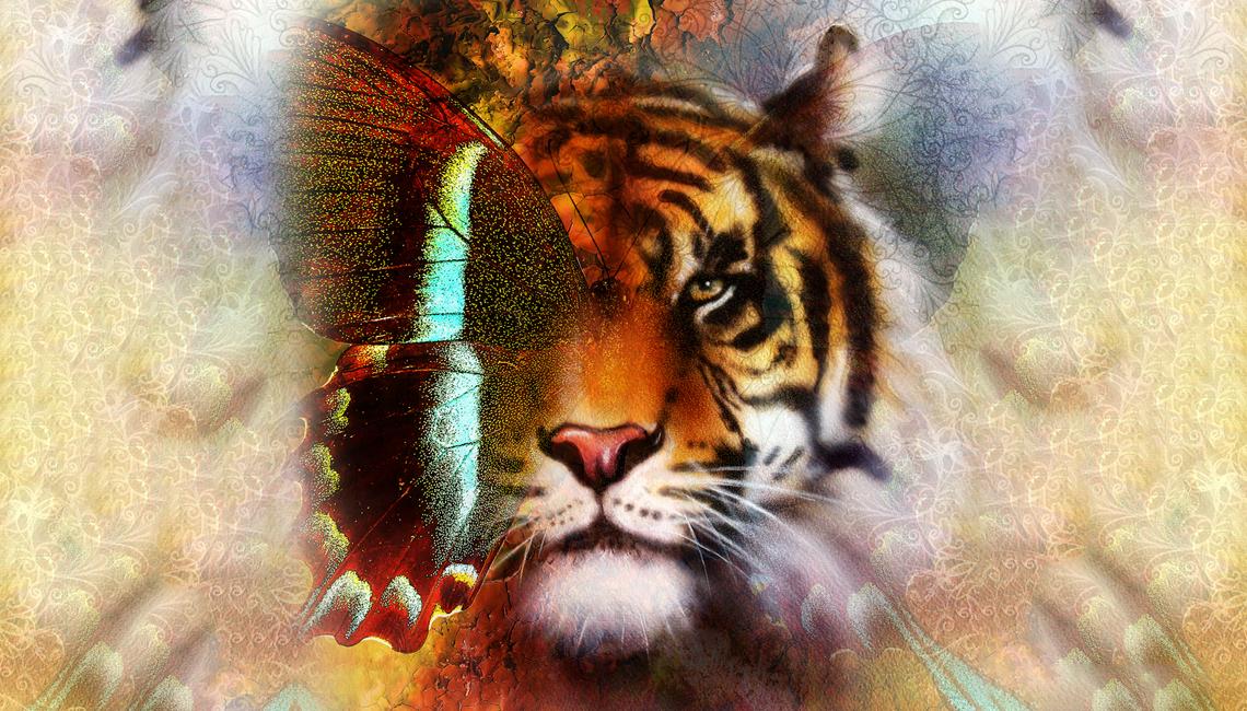 Spirit-Animal-cover.png