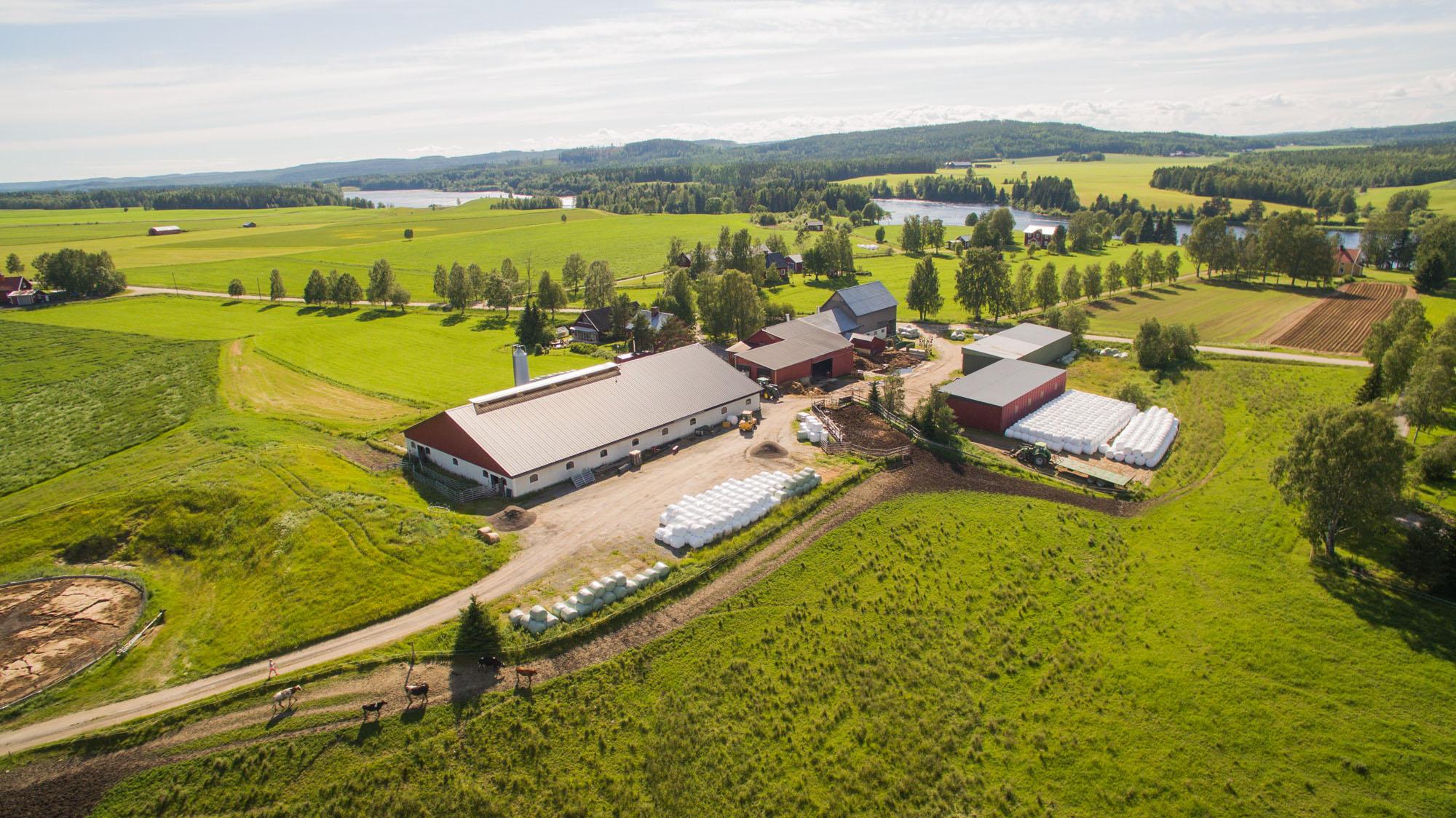 Rödåsens-gård-07-vy-över-gården.jpg
