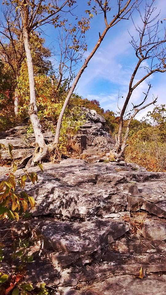 Capen Rock Park