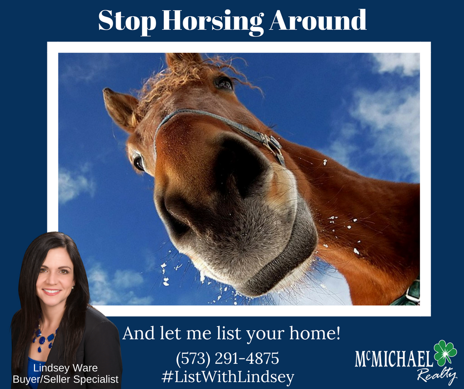 Stop Horsing Around.png