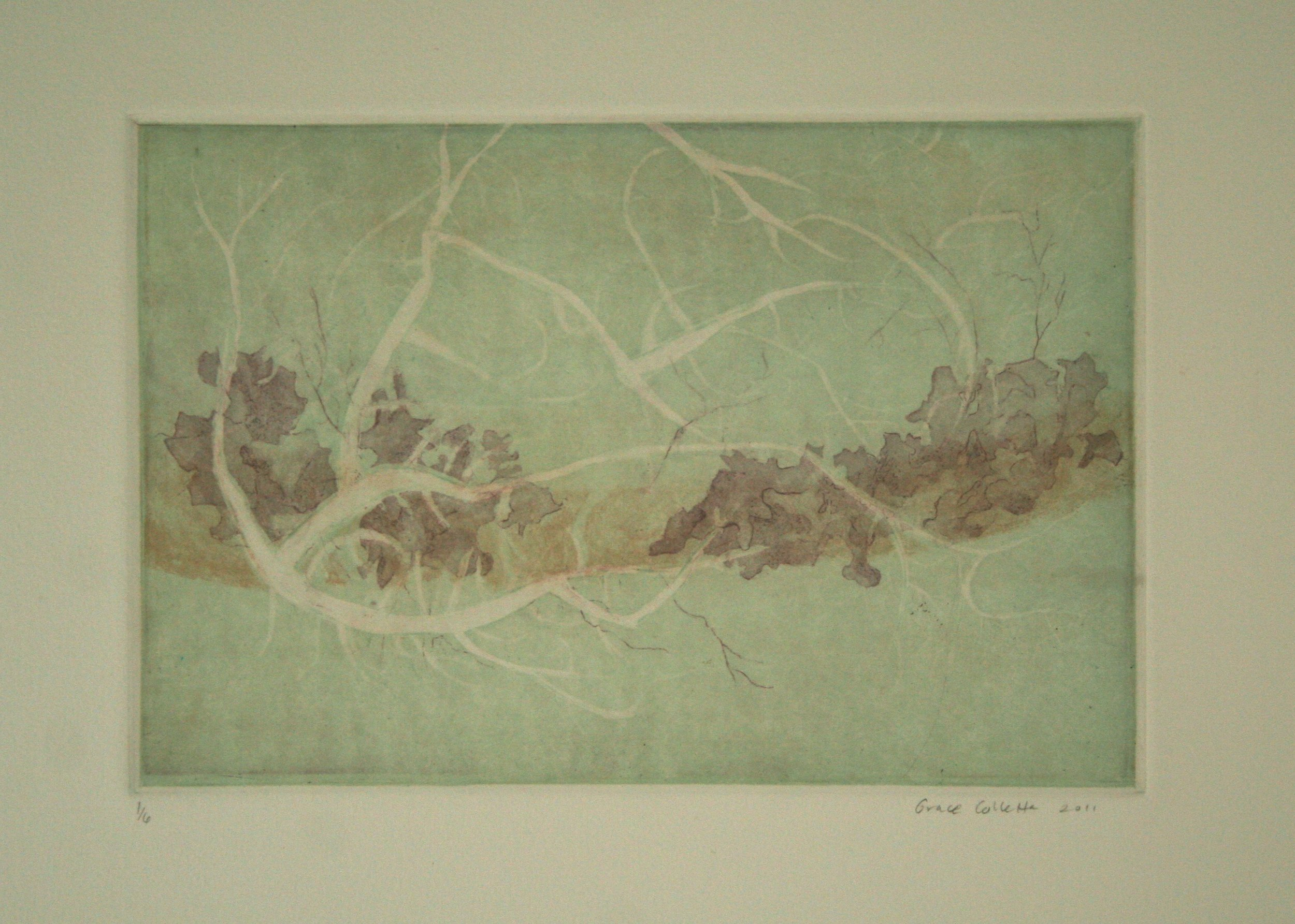 Lichen, etching, 6 x 9 in, 2011