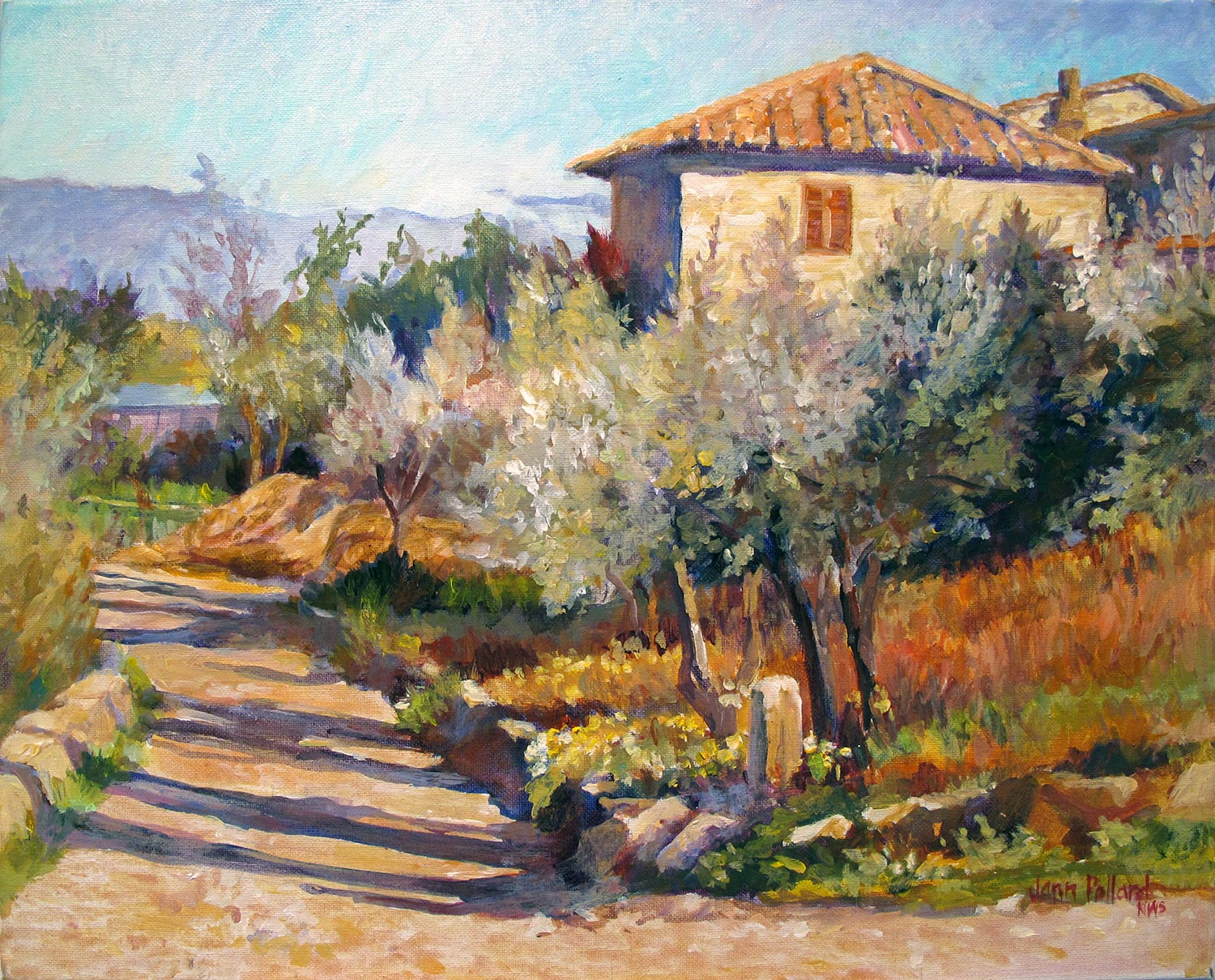 Tuscan Late Afternoon Shadows