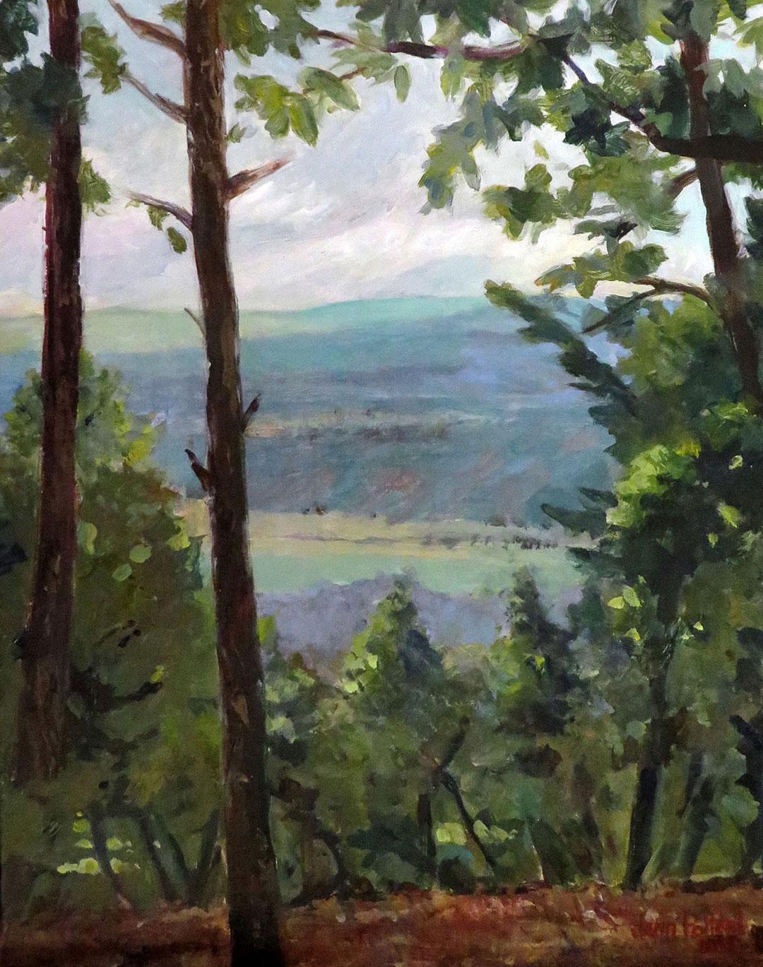 Appalachian Vista
