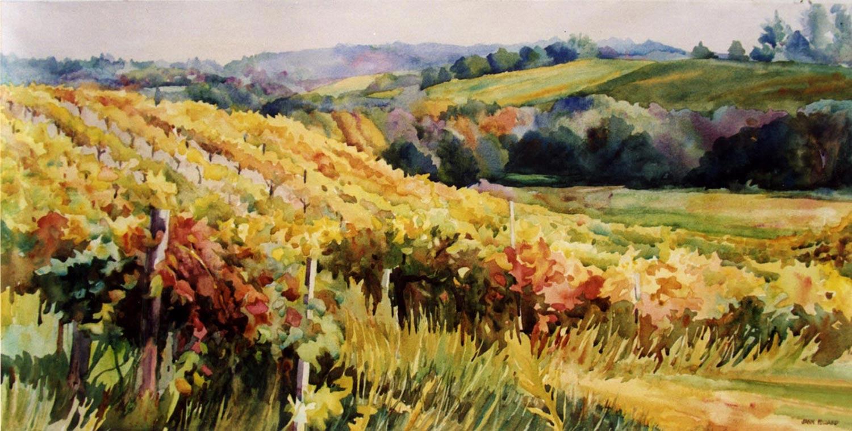 Iron Horse Vineyard Sonoma View