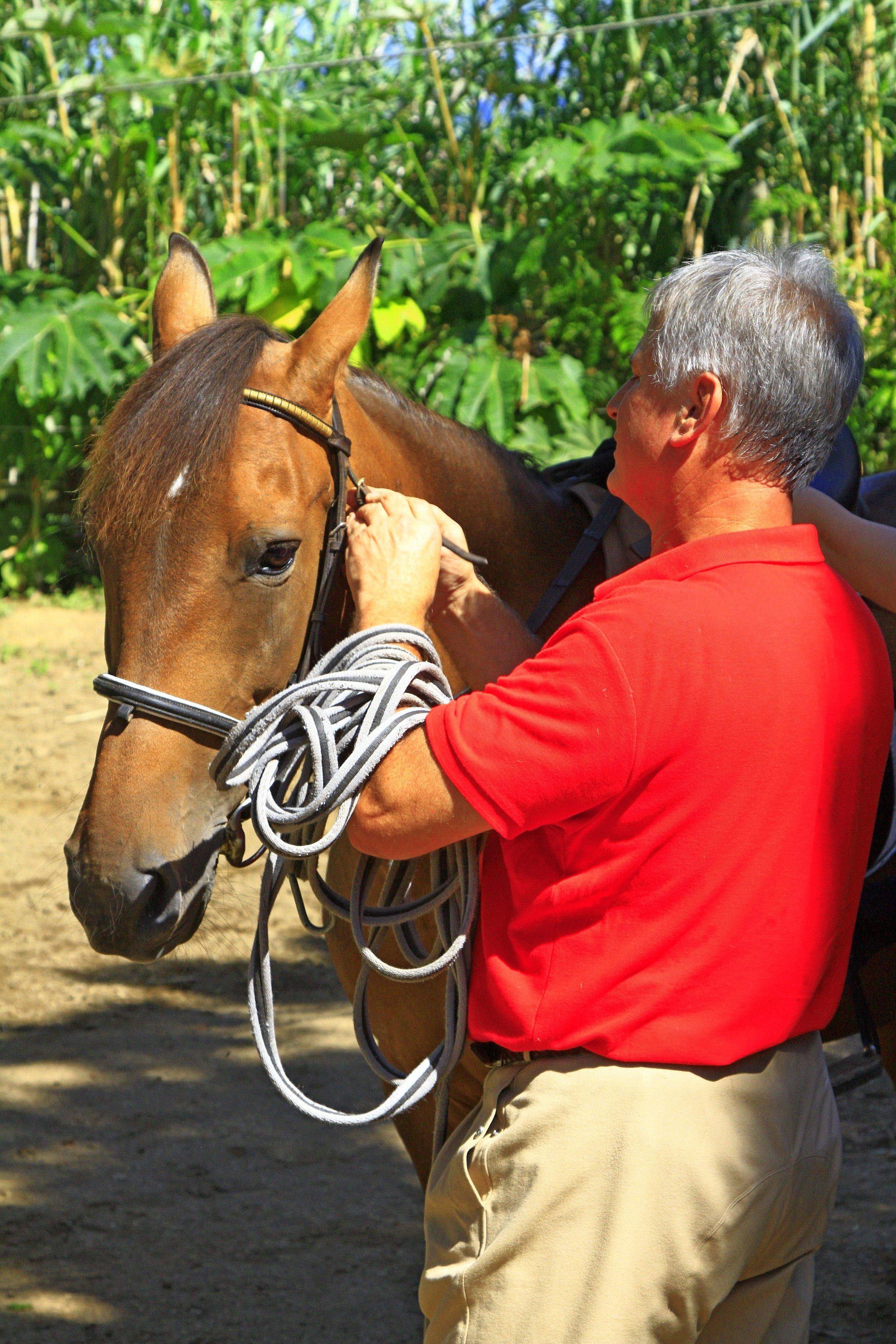 Horse Riding Sete Cidades.jpg