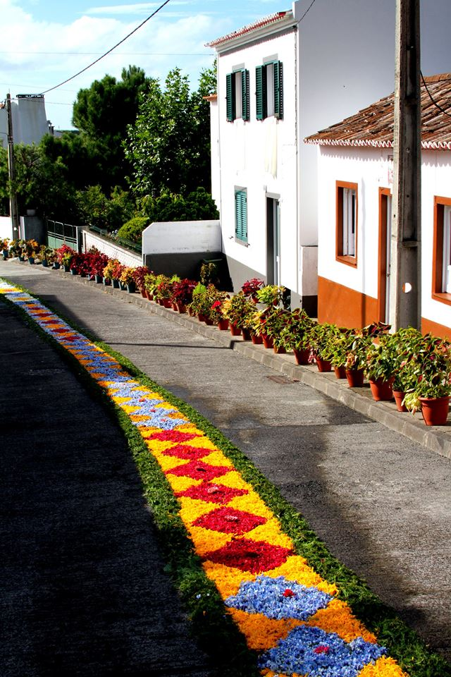 Reasons to visit the São Miguel, Azores - Flowers in Porto Formoso.jpg