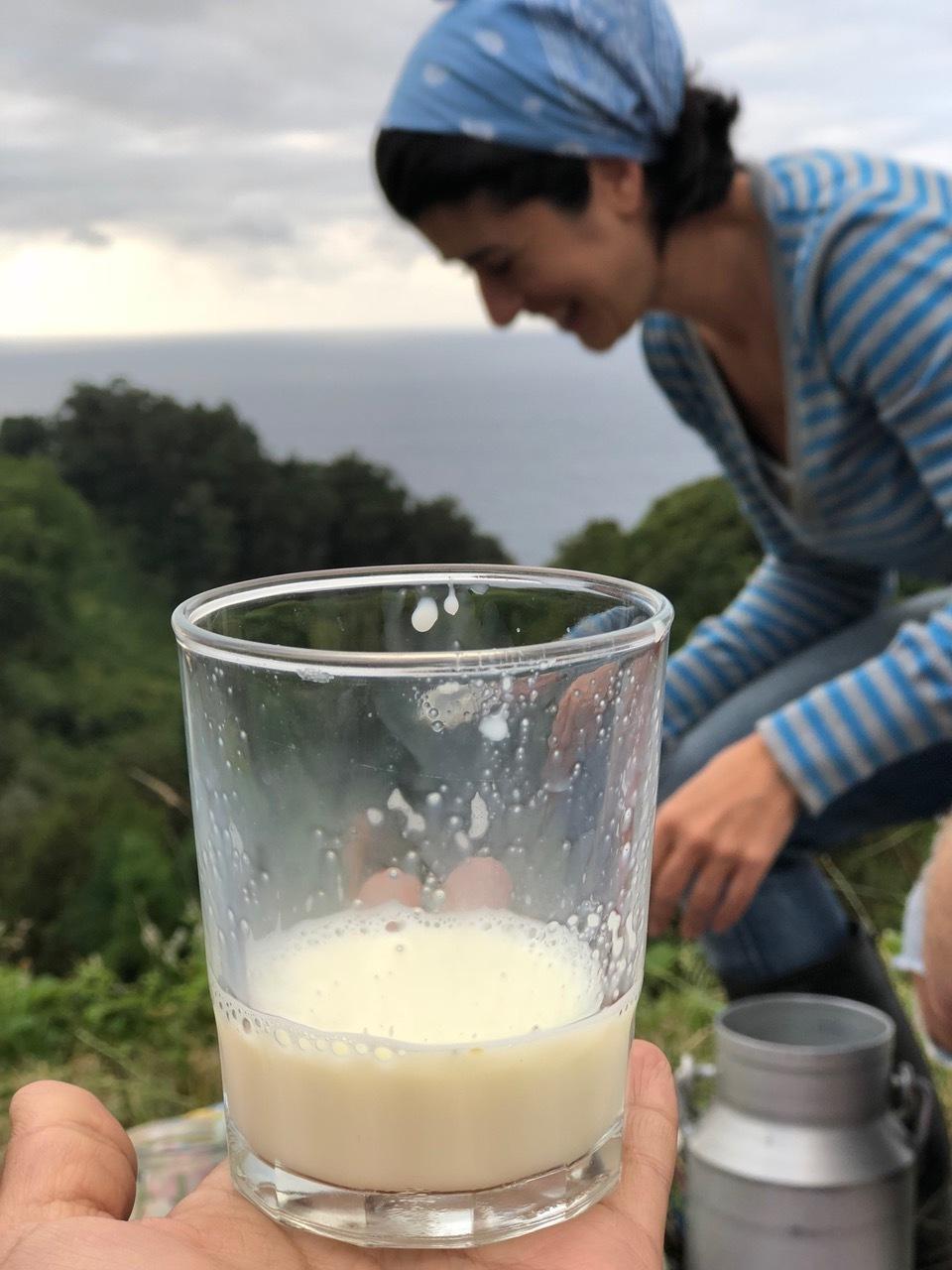 Farm tour raw milk.jpeg