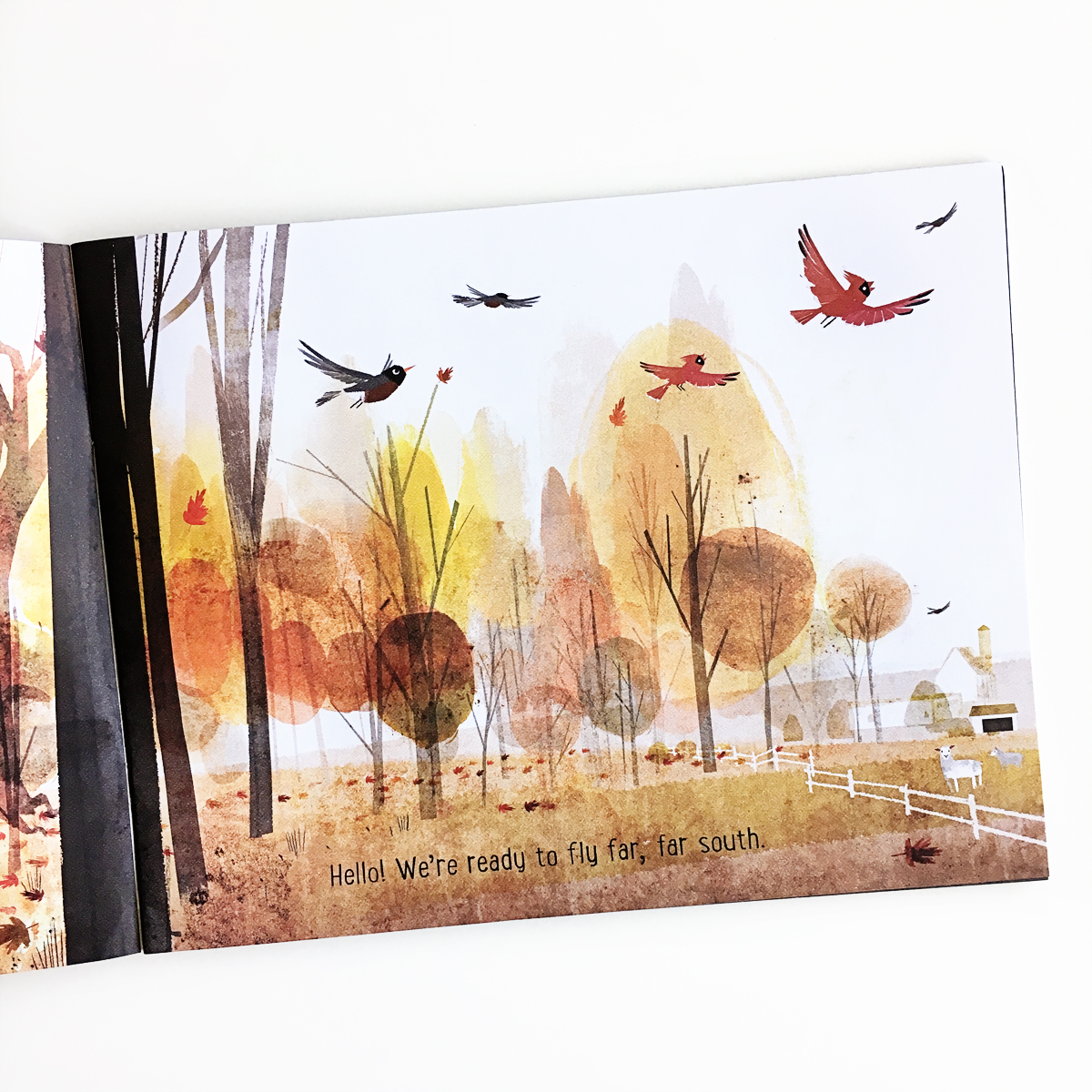 Goodbye Autumn, Hello Winter | Books For Diversity