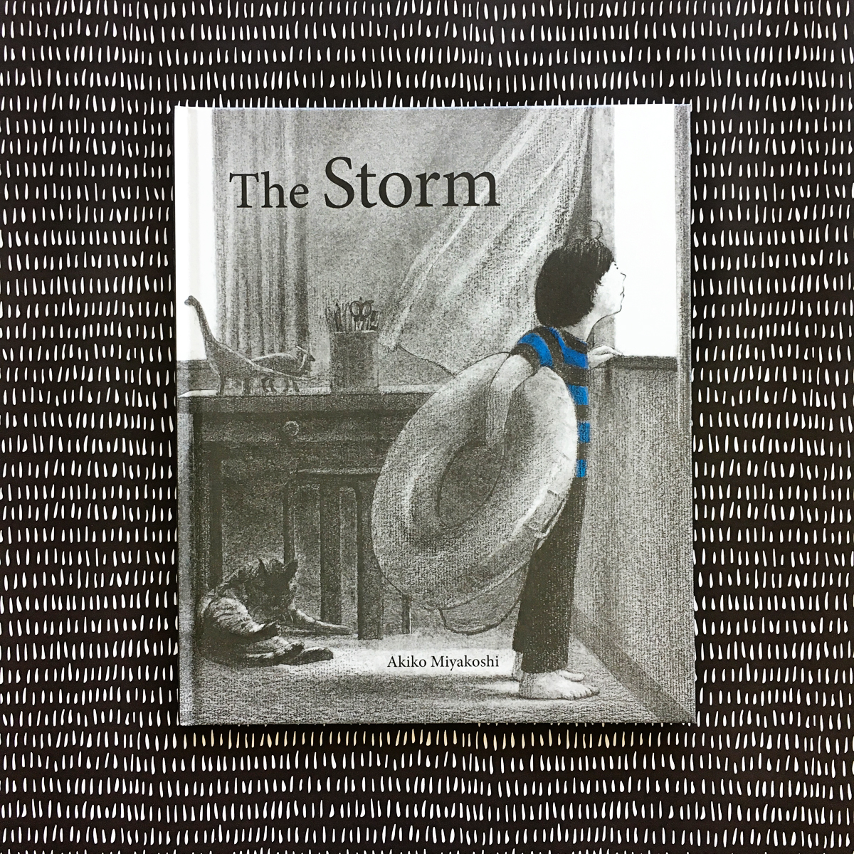 The Storm | Books For Diversity