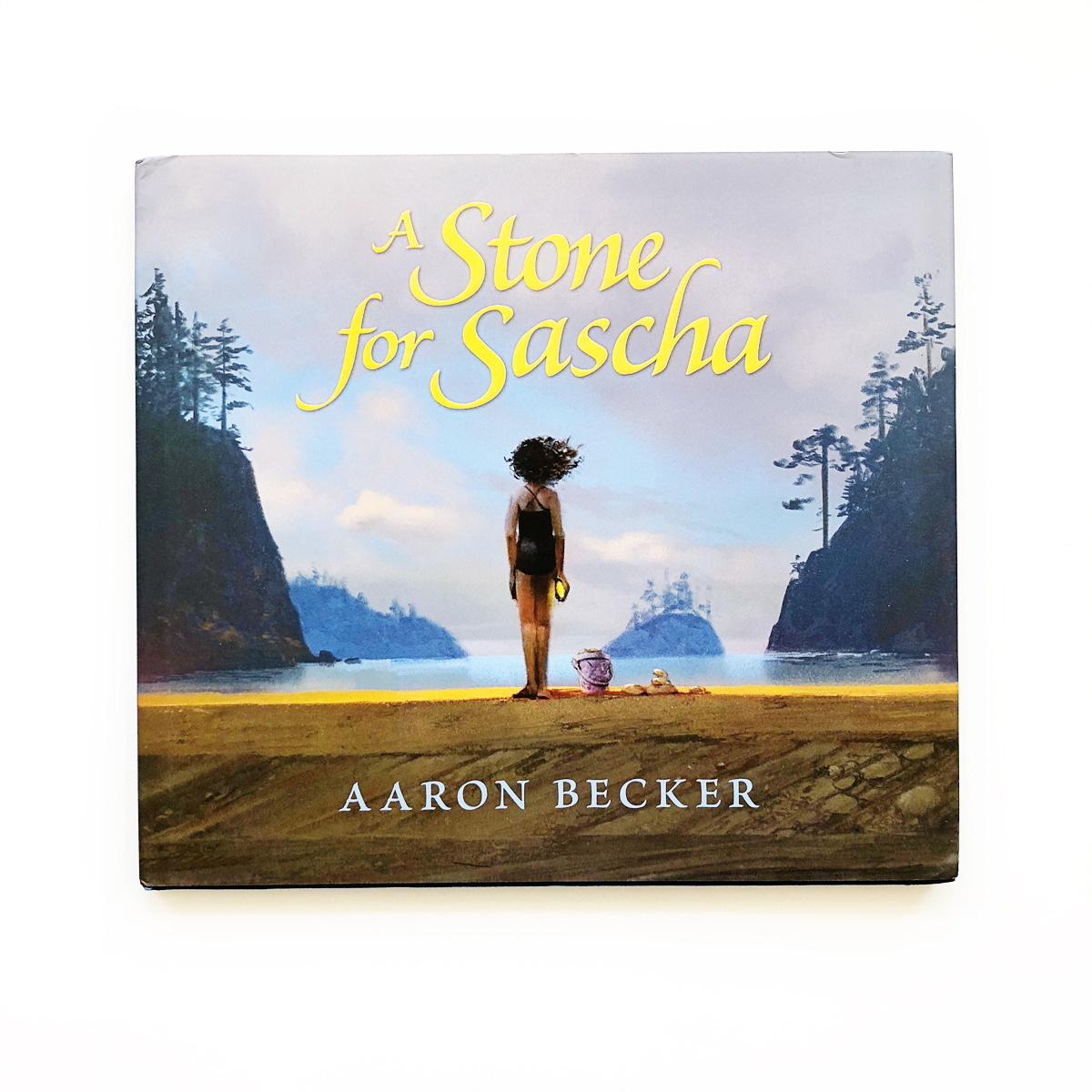 A Stone for Sascha   Books For Diversity
