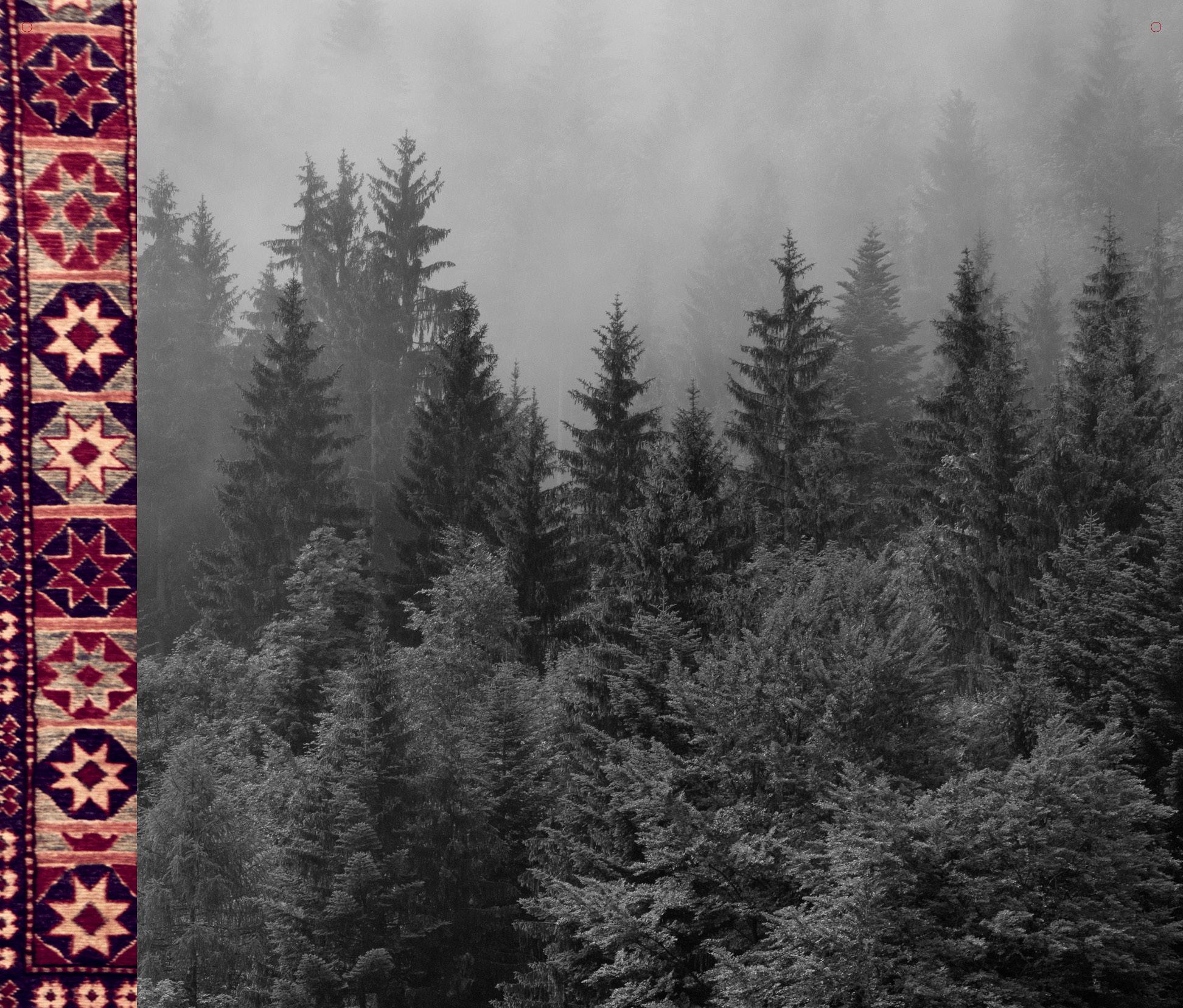 25x23_wallposter_poles_background_october_fall16.jpg