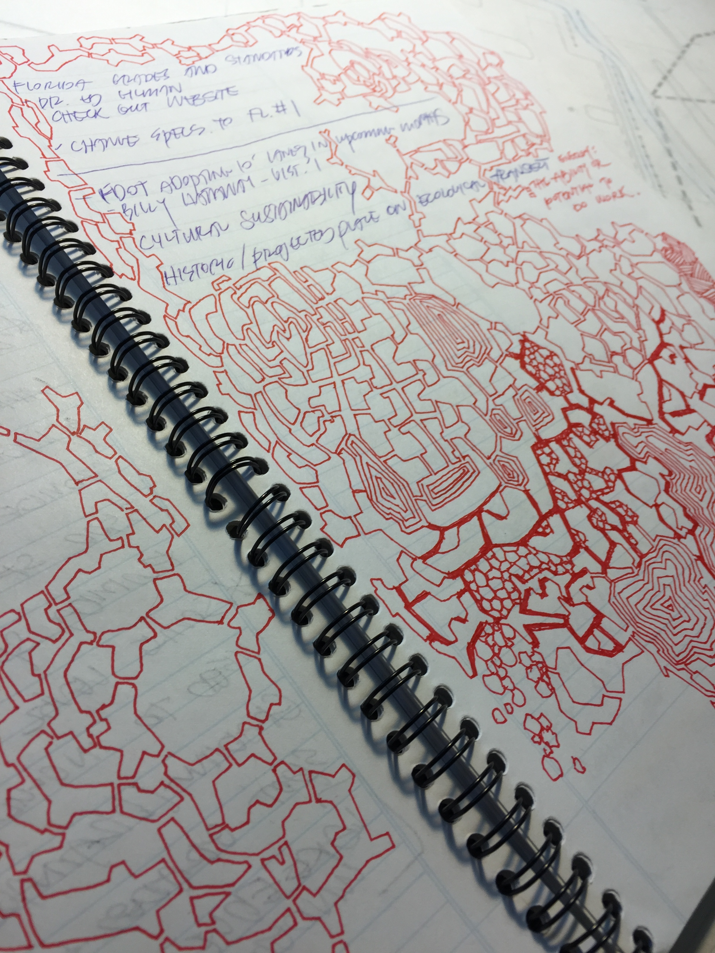 Doodling during meetings is important to me.I keep my notebooks not for the notes, but for the sketches in the margins and drawings across the pages. -
