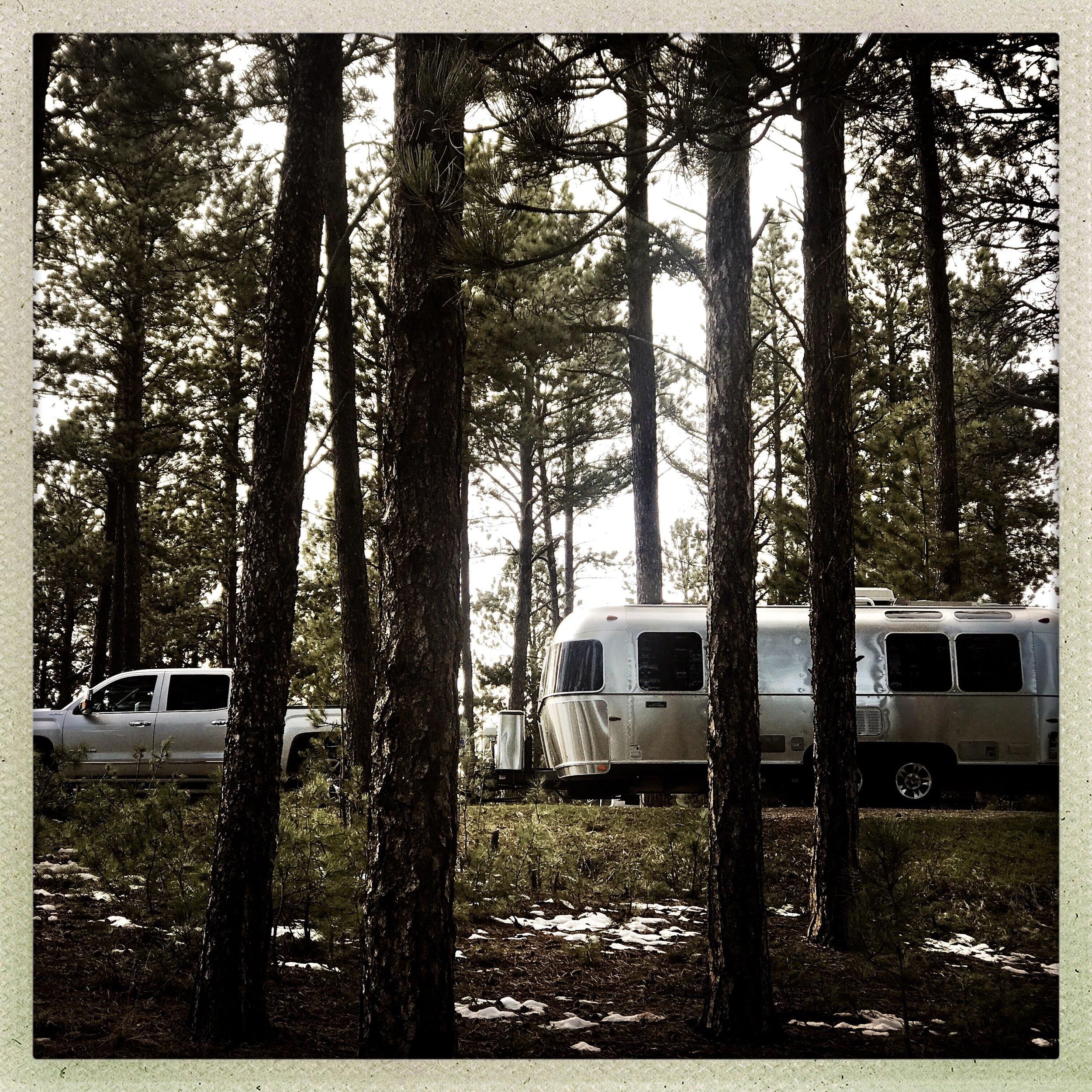 8 Custer State Park.jpg