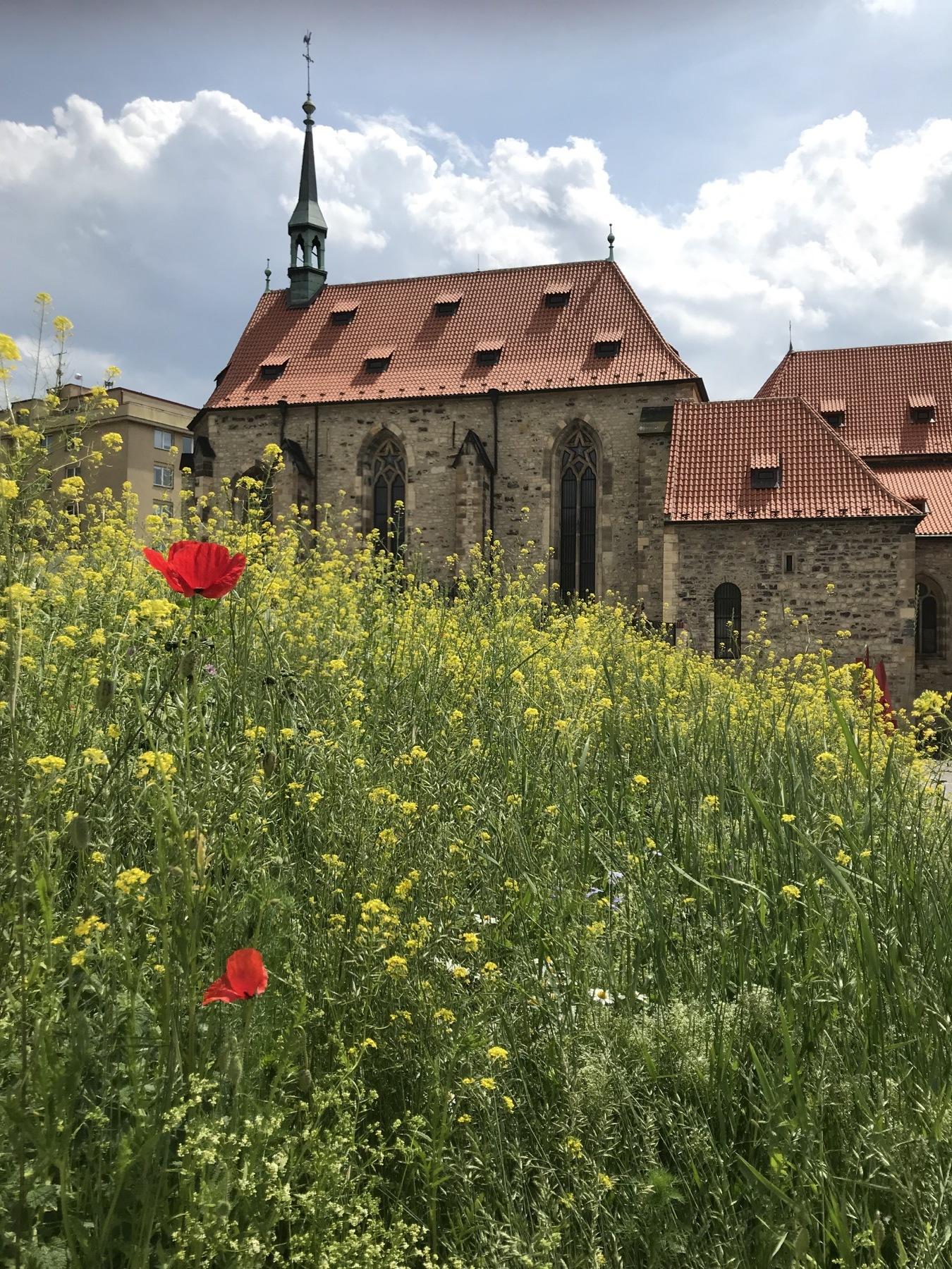 garden at the monastery_resized_07:25:2019.JPG