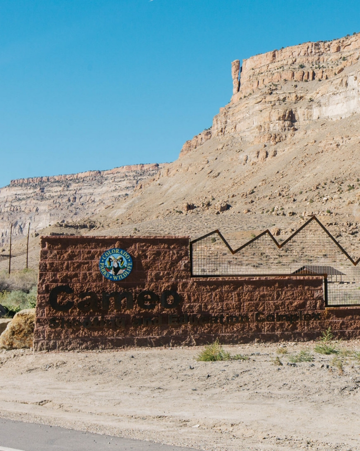 Cameo Shooting + Education Complex - From I-70, take exit 46, turn north and follow the signs to Cameo.Public shooting range open Wednesday-Sunday, 10am until one hour before sunset. Prices coming soon.Range Office: 970.464.1339, open Monday-Friday, 8am-5pm.cpw.state.co.us/thingstodo/Pages/cameo-shooting-complex.aspx