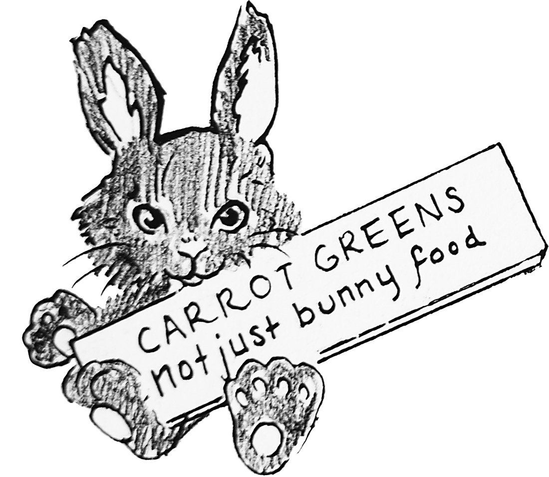 bunny illustration.jpg