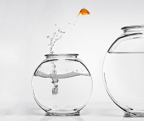 Start+Small+Think+Big.jpg