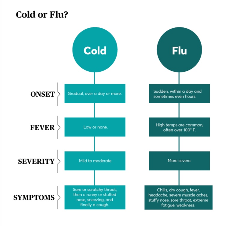 is it the cold or is it the flu