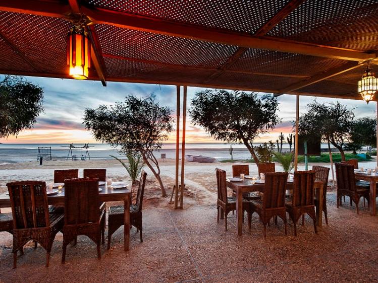 Restaurant-Terrace.jpg