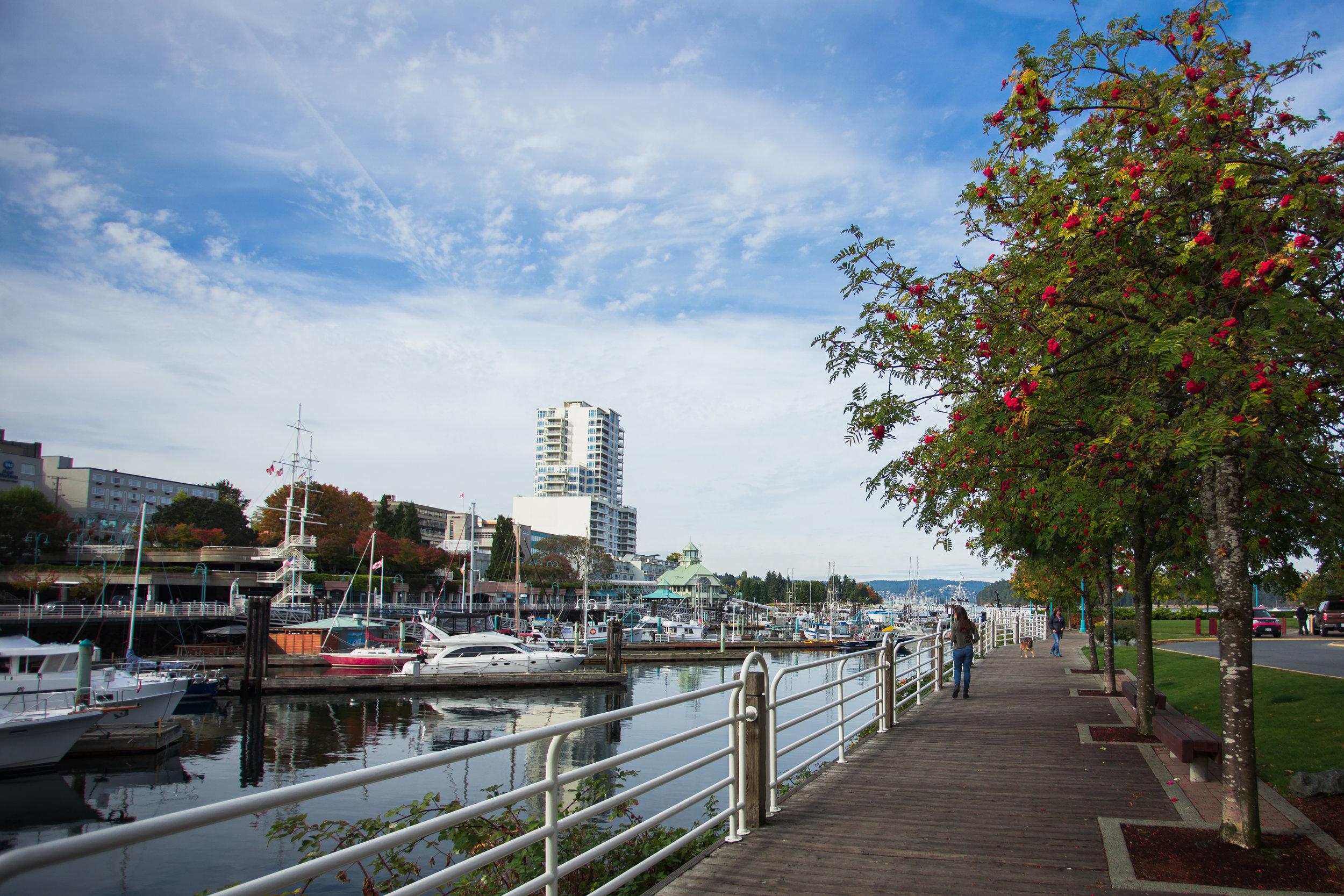 Waterfront-Walkway-Anderson.jpg