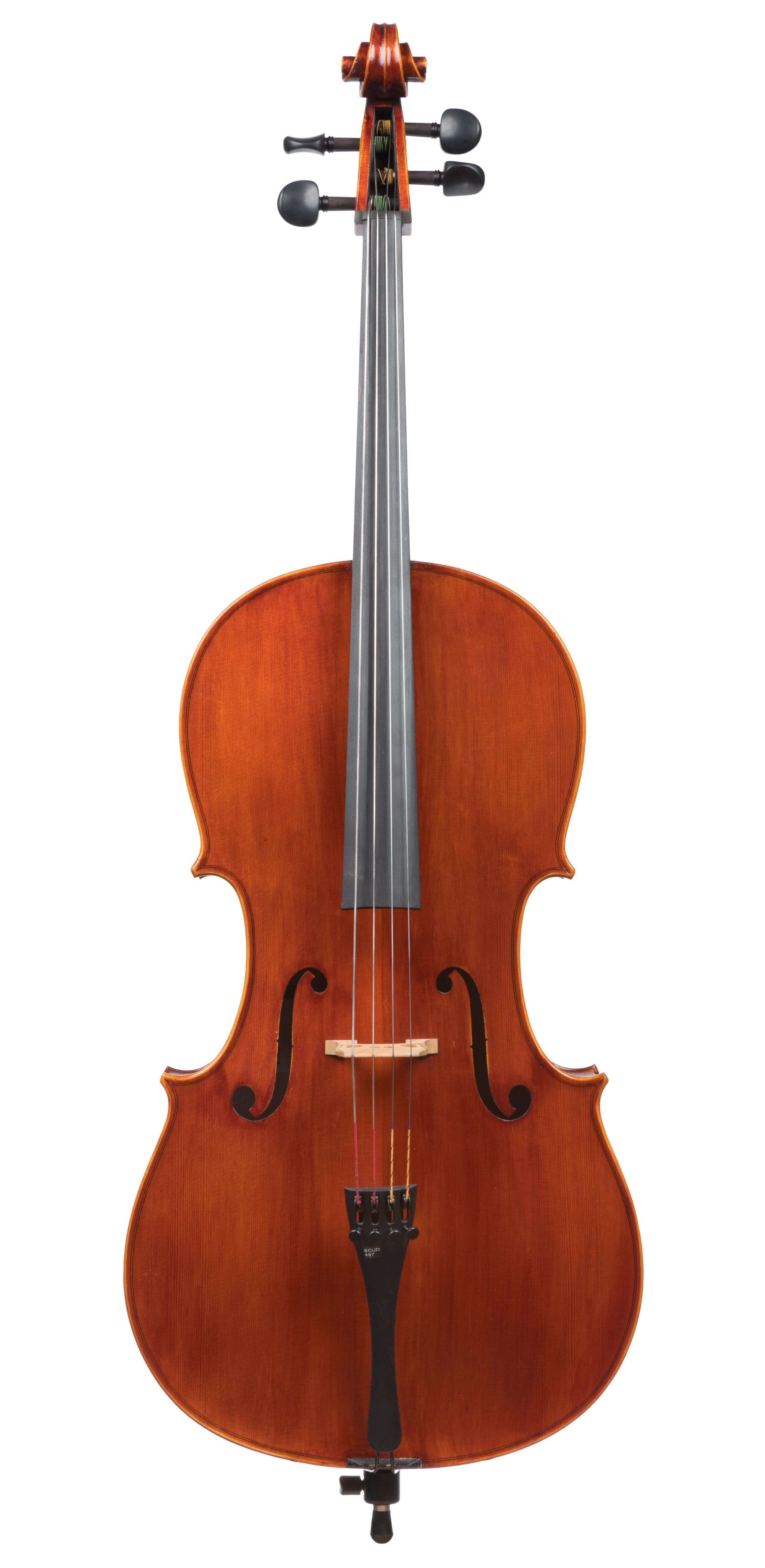 Seman Violins SVC70 3/4 Cello -