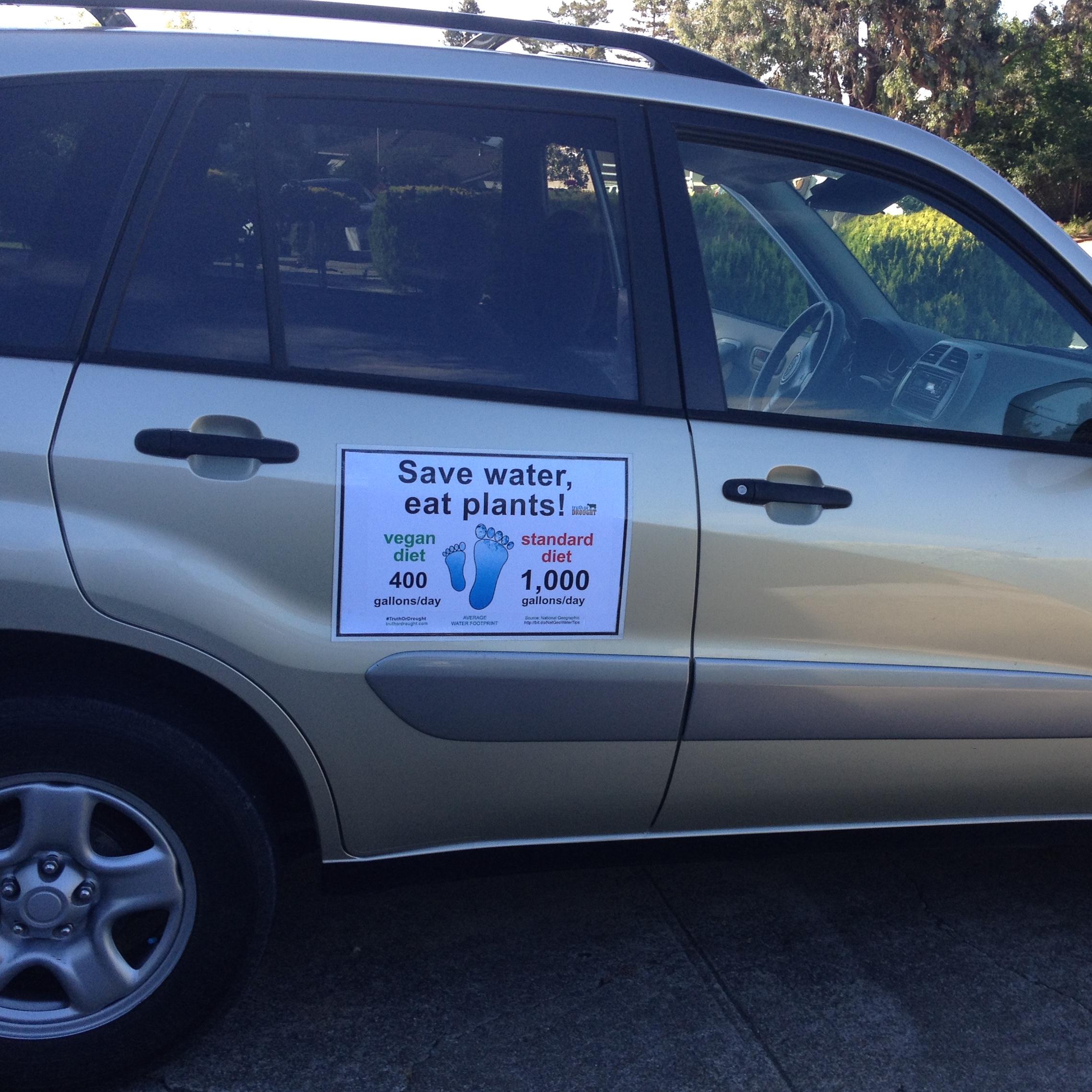 SaveWaterEatPlants-car-magnet.JPG