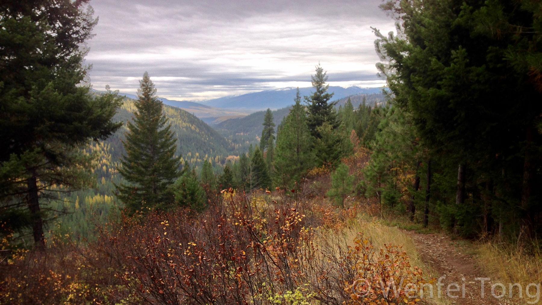 Fall on University Mountain