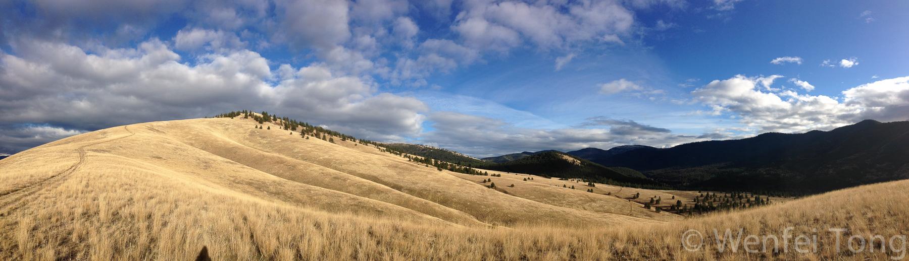 Mount Sentinel in autumn