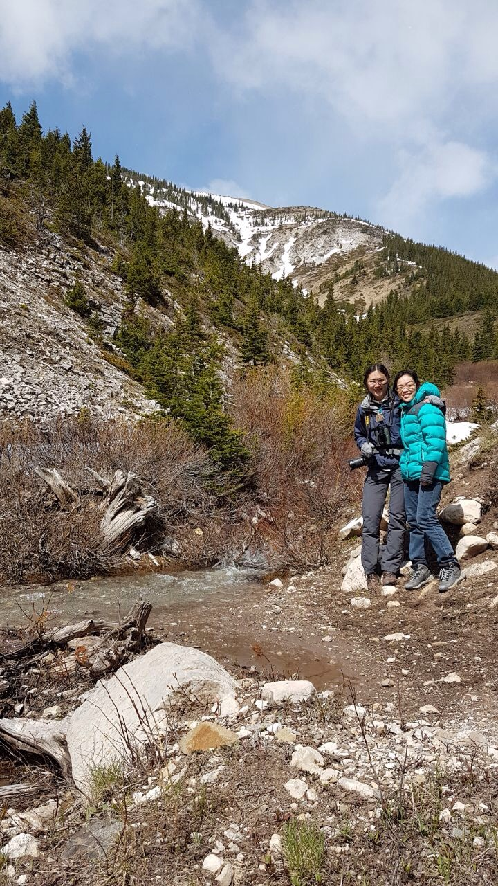 spring in the Bob Marshall wilderness