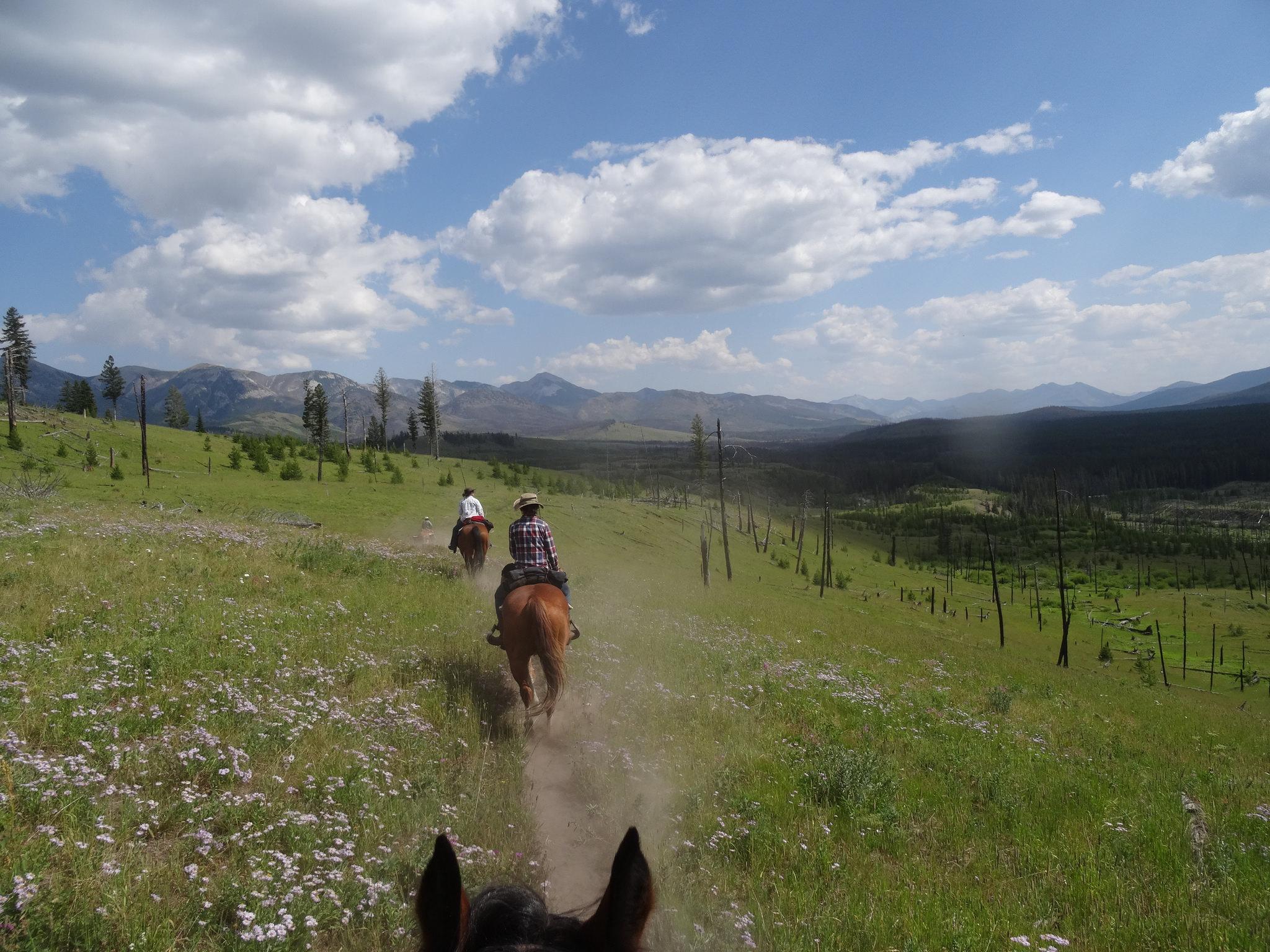 Riding through the Bob Marshall Wilderness
