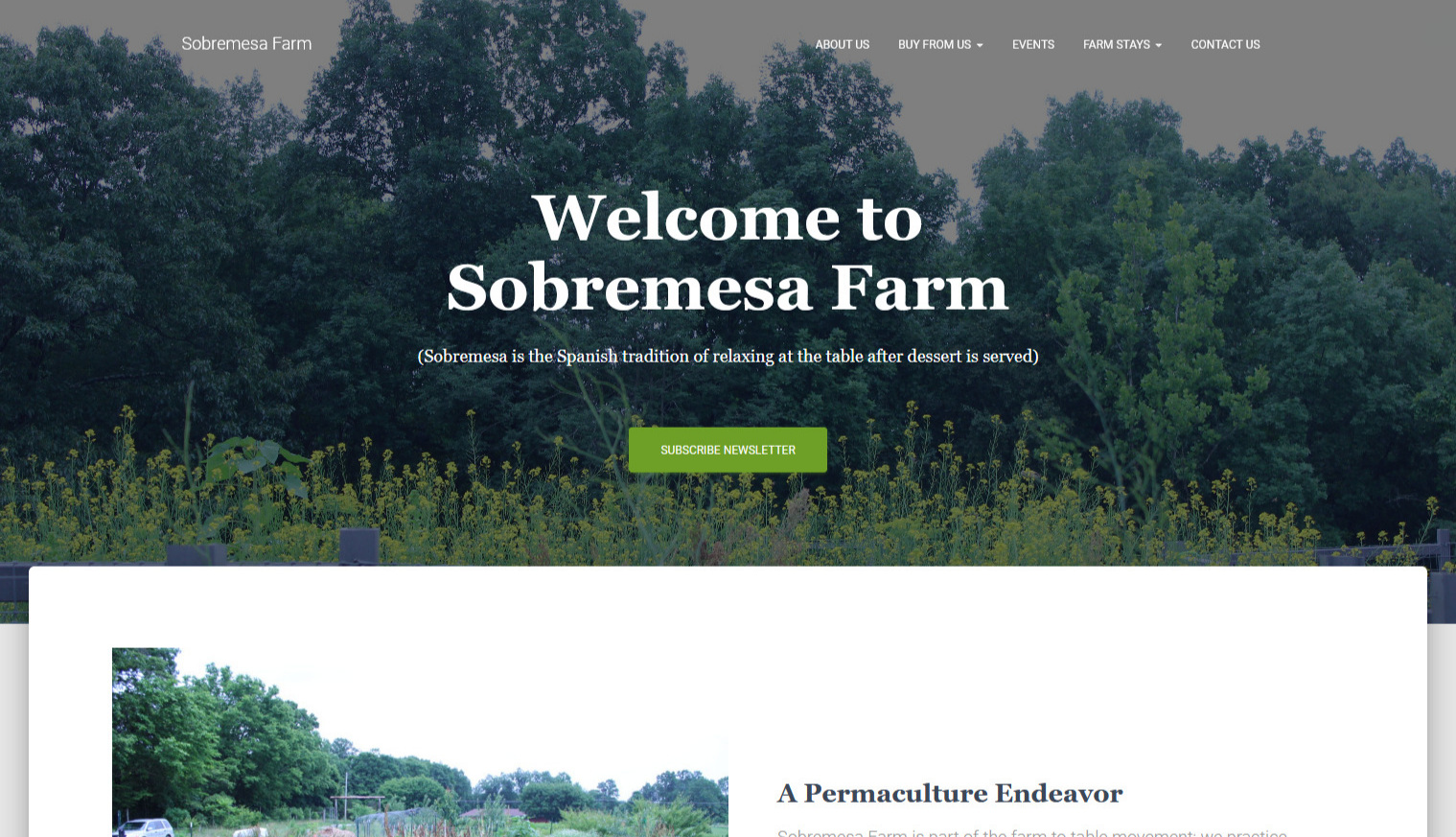 After - Now, the Sobremesa Farm has been re-designed into a portolio-style website which introduces its history, culture, and products. Furthermore, customers can leave their email to get the newsletter regularly, and the website now provides Square online payment system so that customers have an easier way to purchase goods.