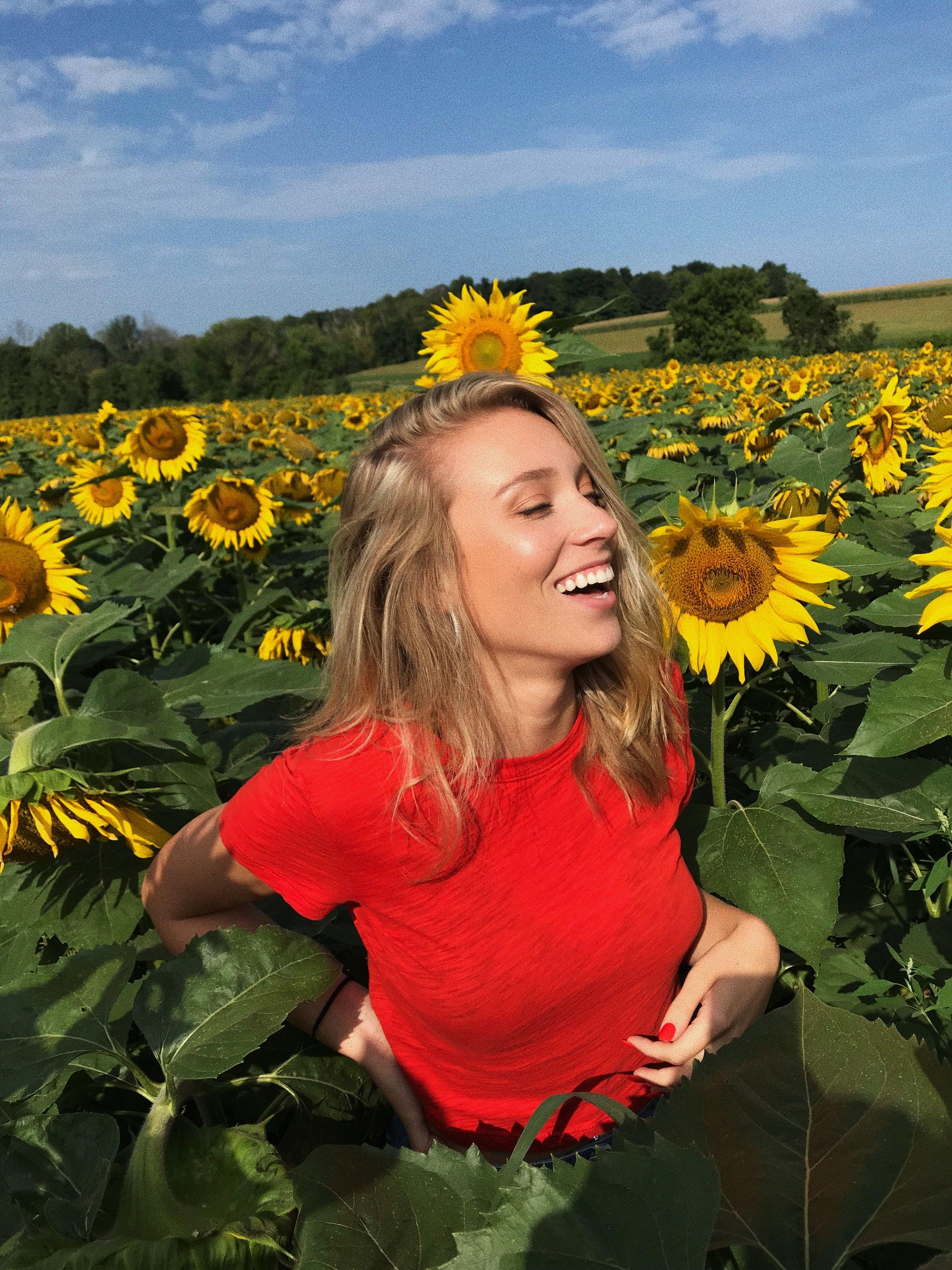 sunflower 3.JPG