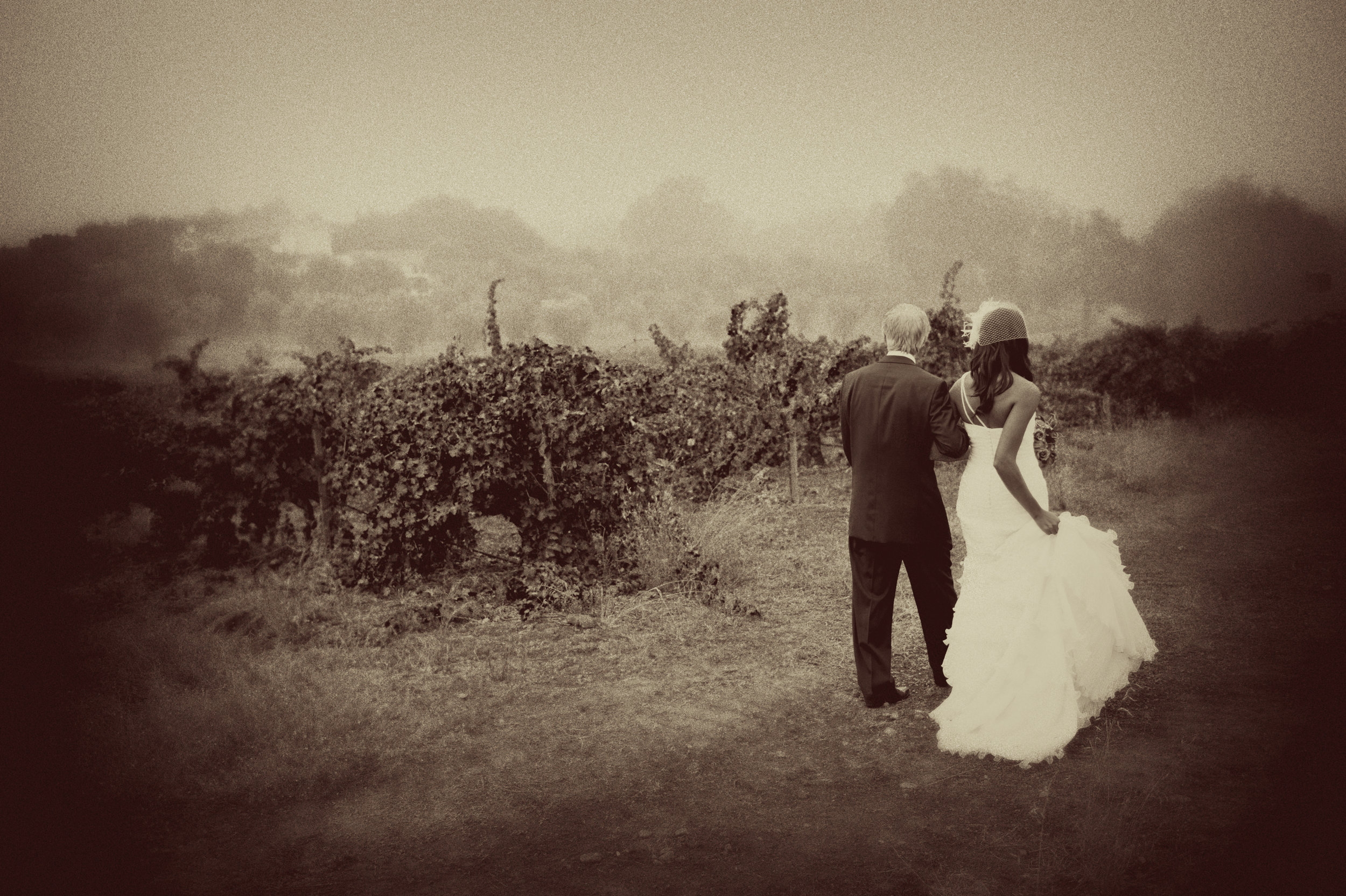 Classic Fall Vineyard Wedding -