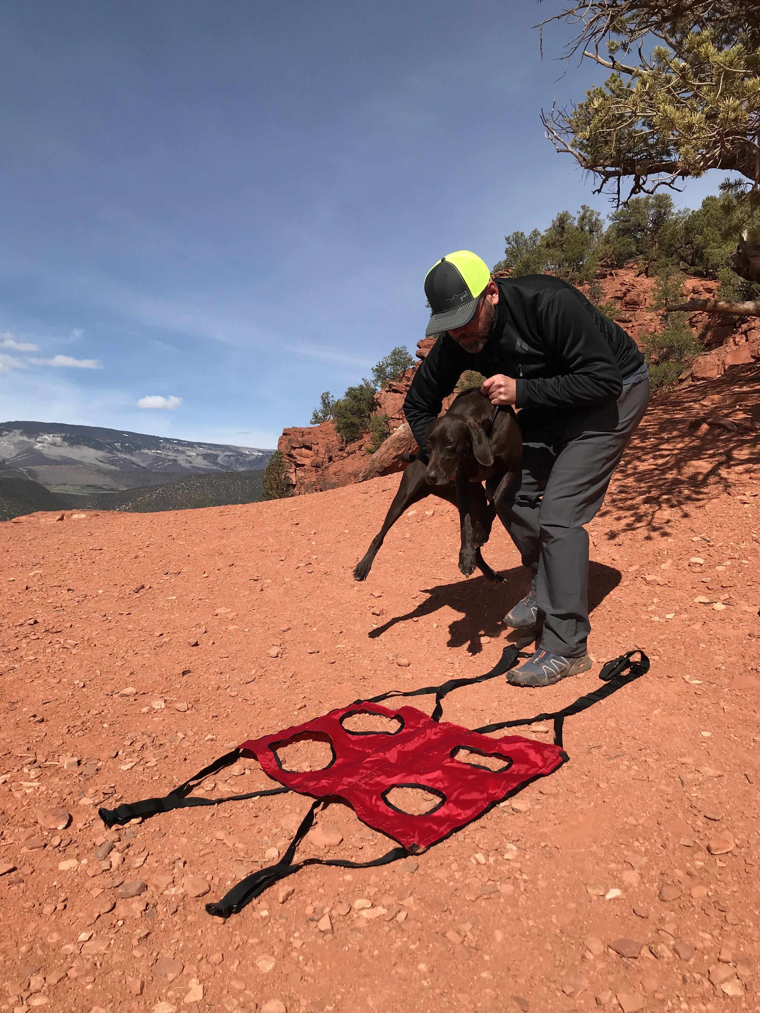Dog Rescue Backpack