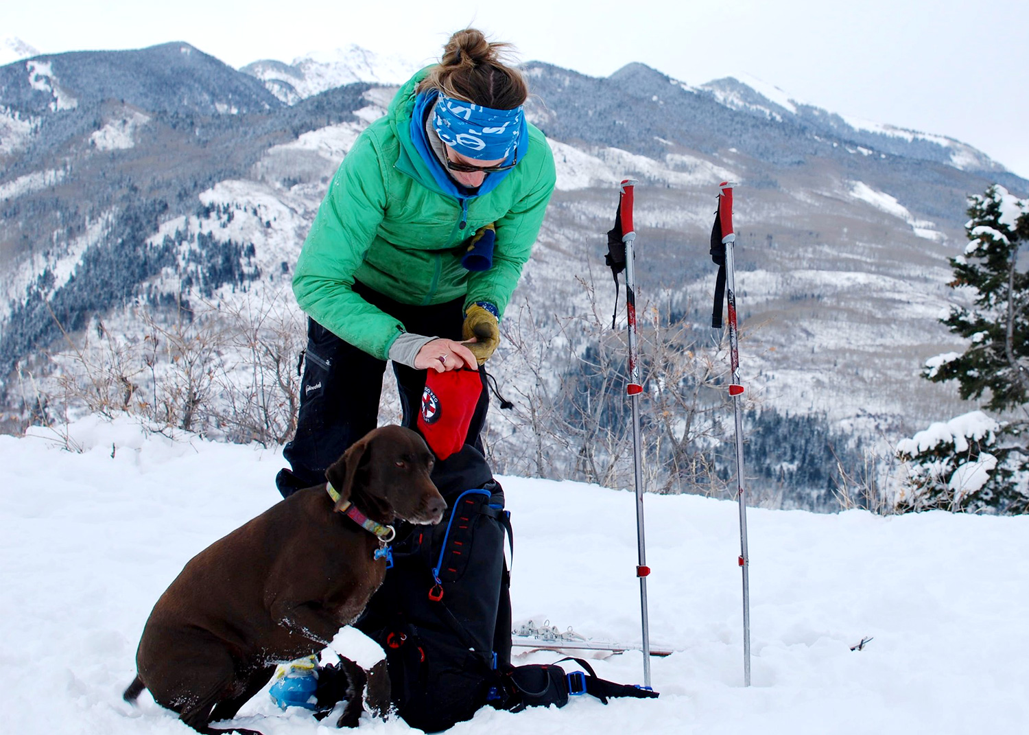 emergency dog carrier for mountains.jpg