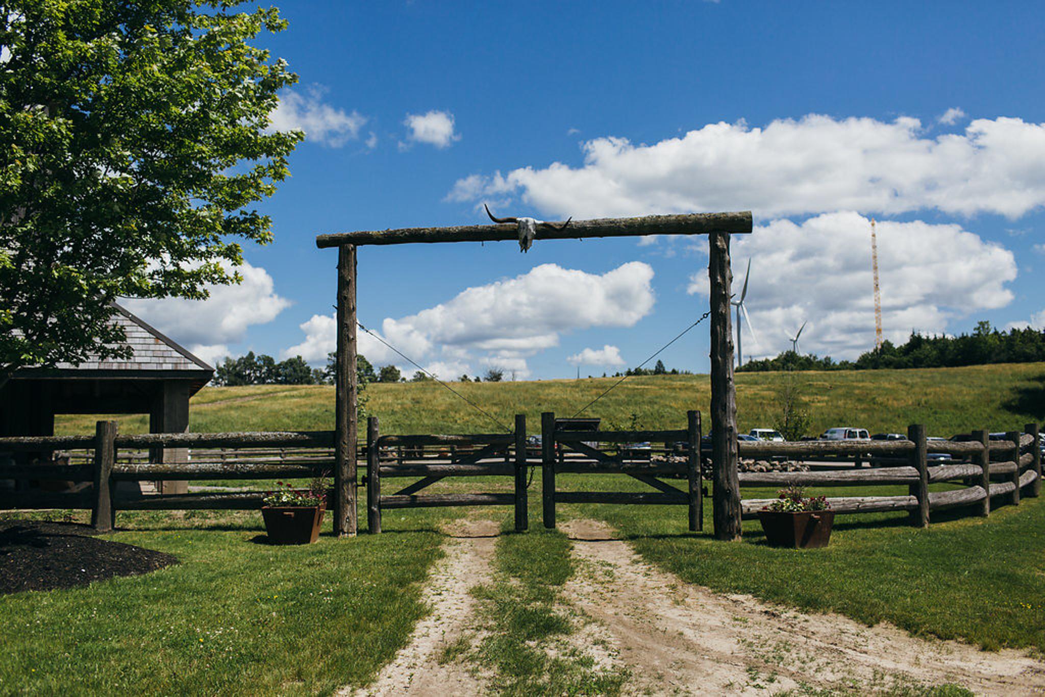 Iron Horse Ranch Wedding (29 of 122).jpg