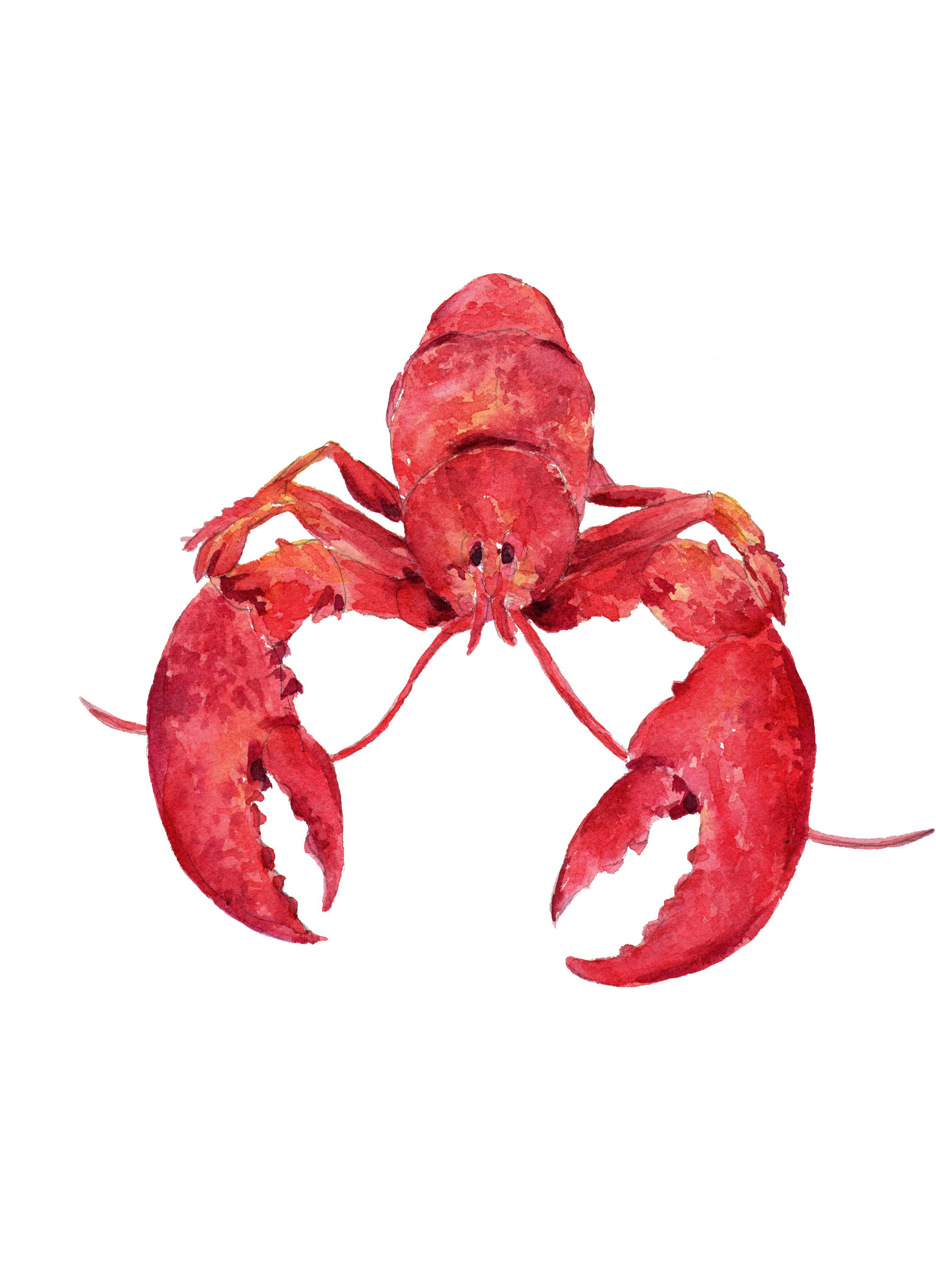 lobster art.jpg